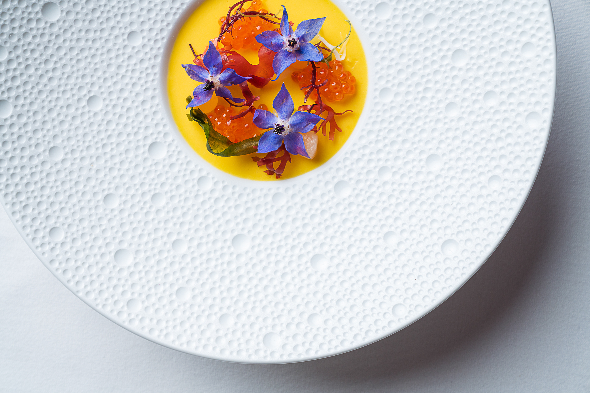A dish topped with colorful edible flowers in a yellow gel.