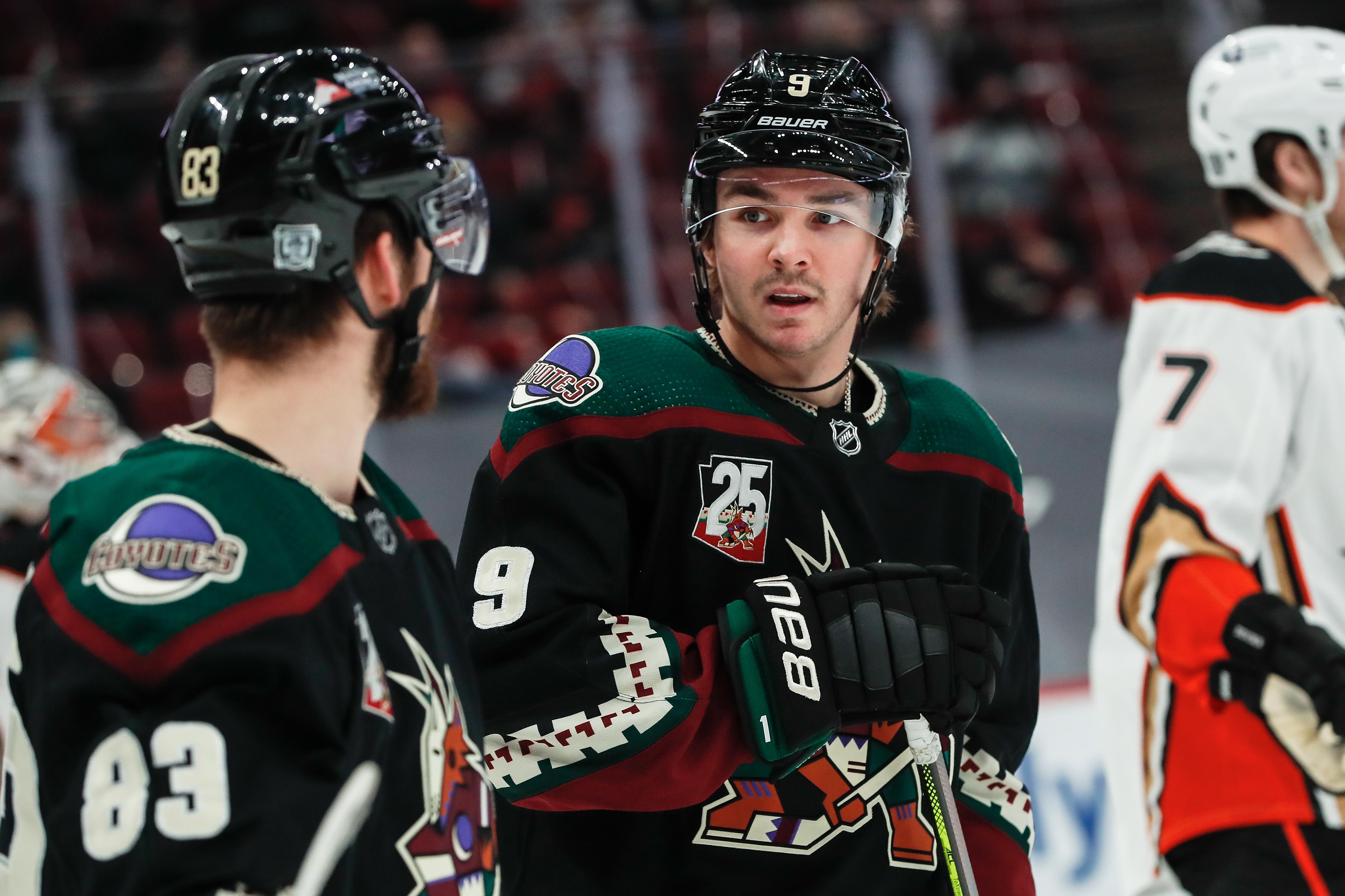 NHL: JAN 28 Ducks at Coyotes