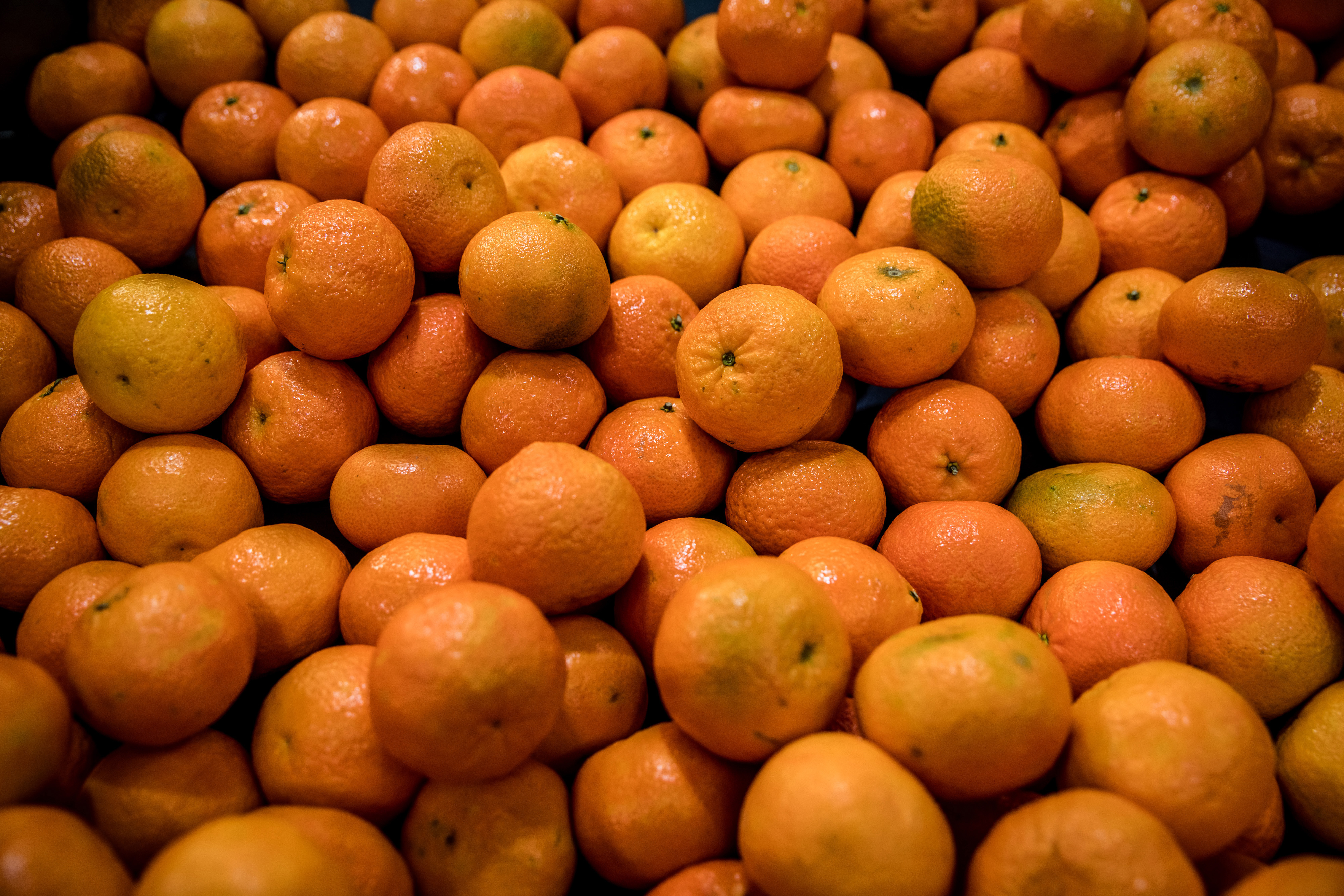Spanish Clementine Farming as Europe's Citrus Growers Get Unexpected Lift From Covid