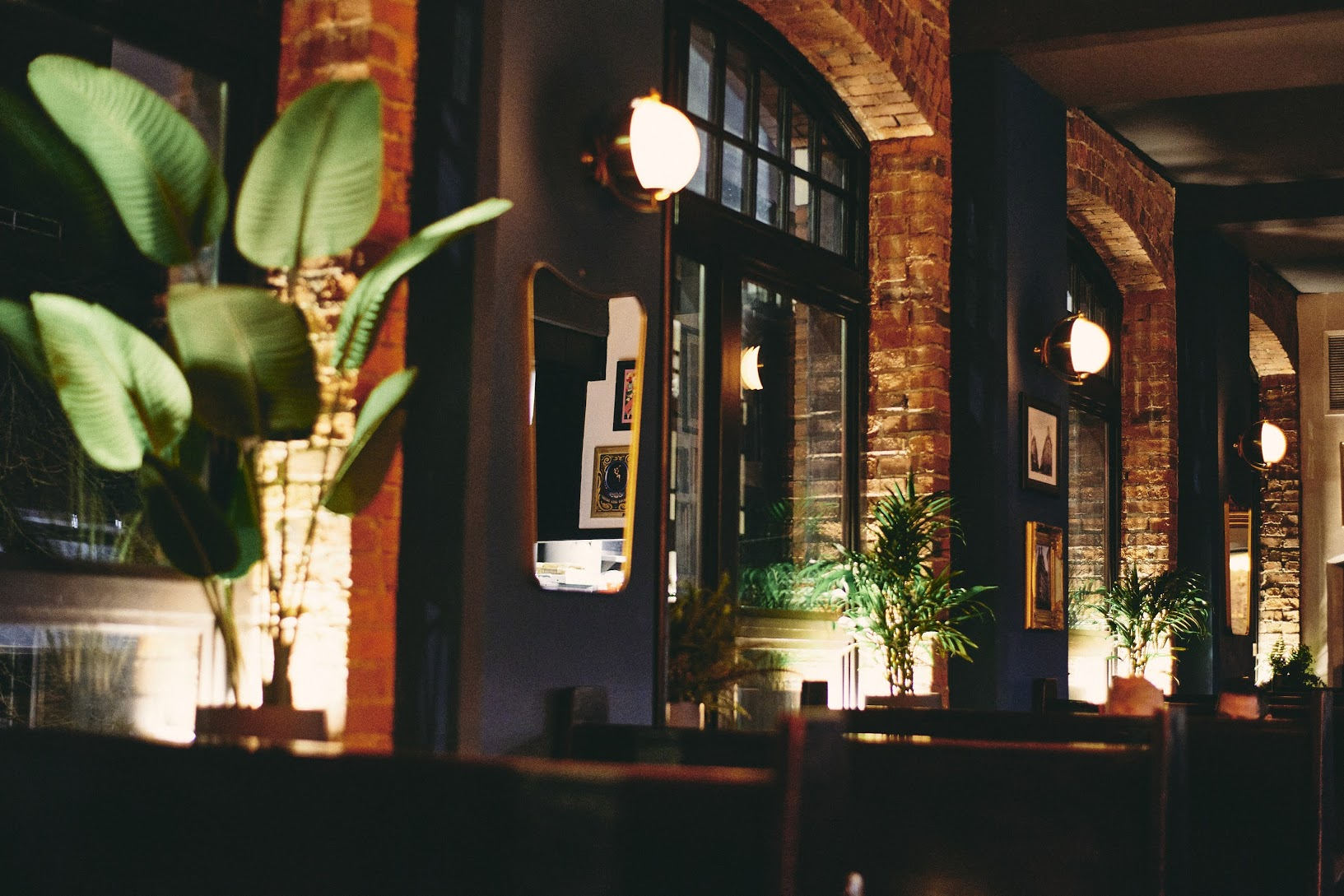 The low-lit interior of the former Queen City Grill, now BOCA Restobar & Grill, with a plant displaying large green fronds in the foreground and tall windows lining the walls