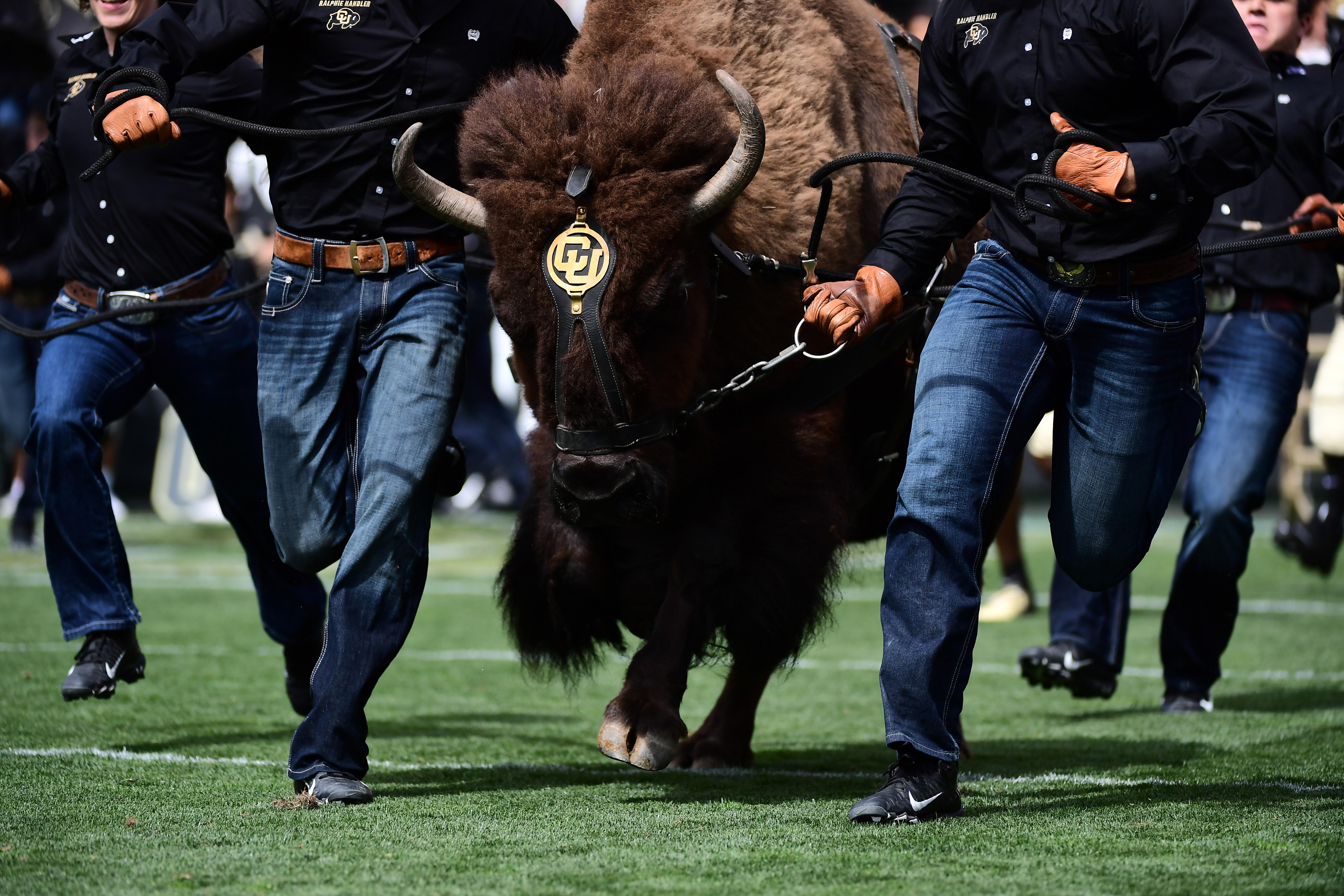 NCAA Football: Nebraska at Colorado