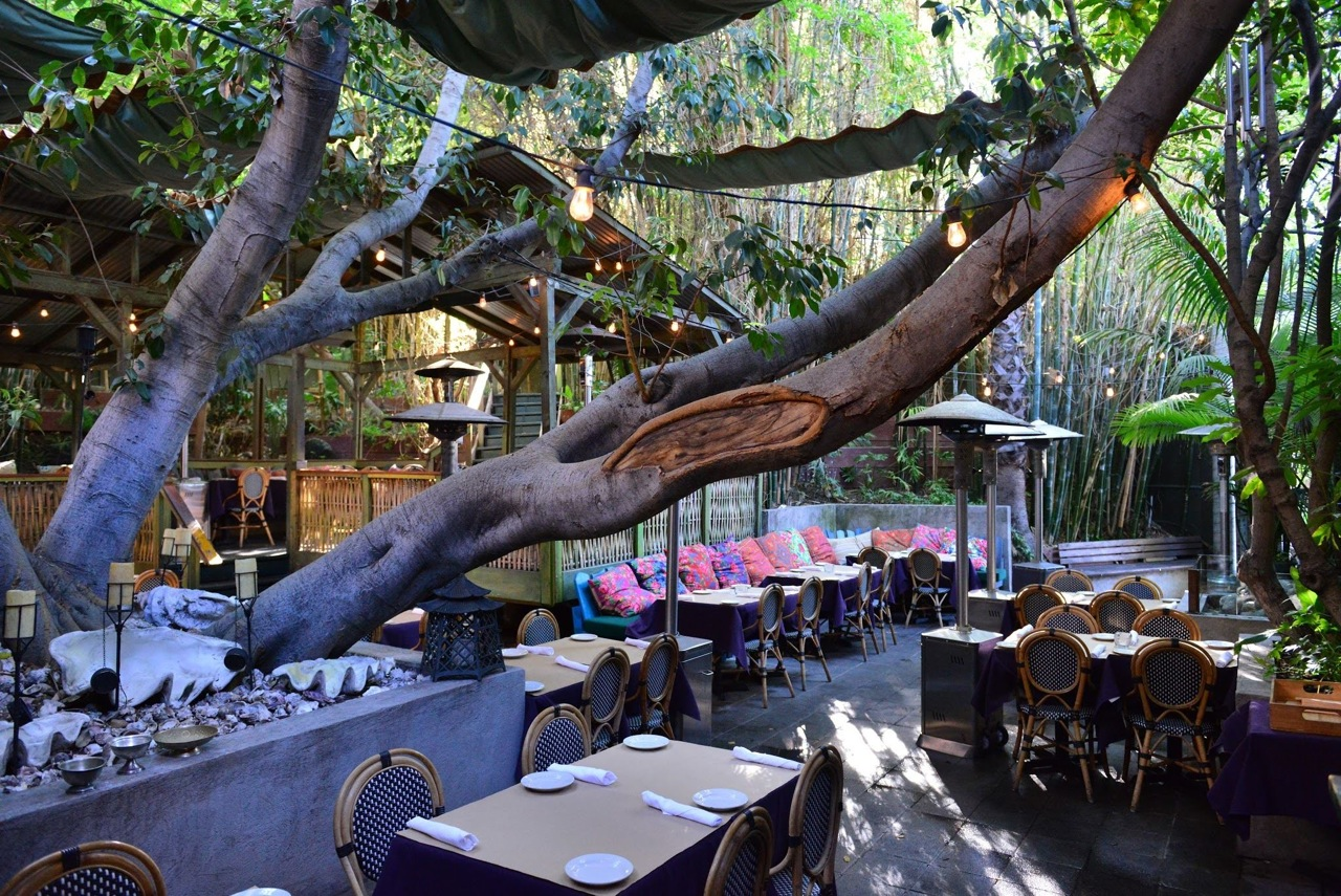 Cliff's Edge, a restaurant in Silver Lake, shown with its leafy patio in daytime.