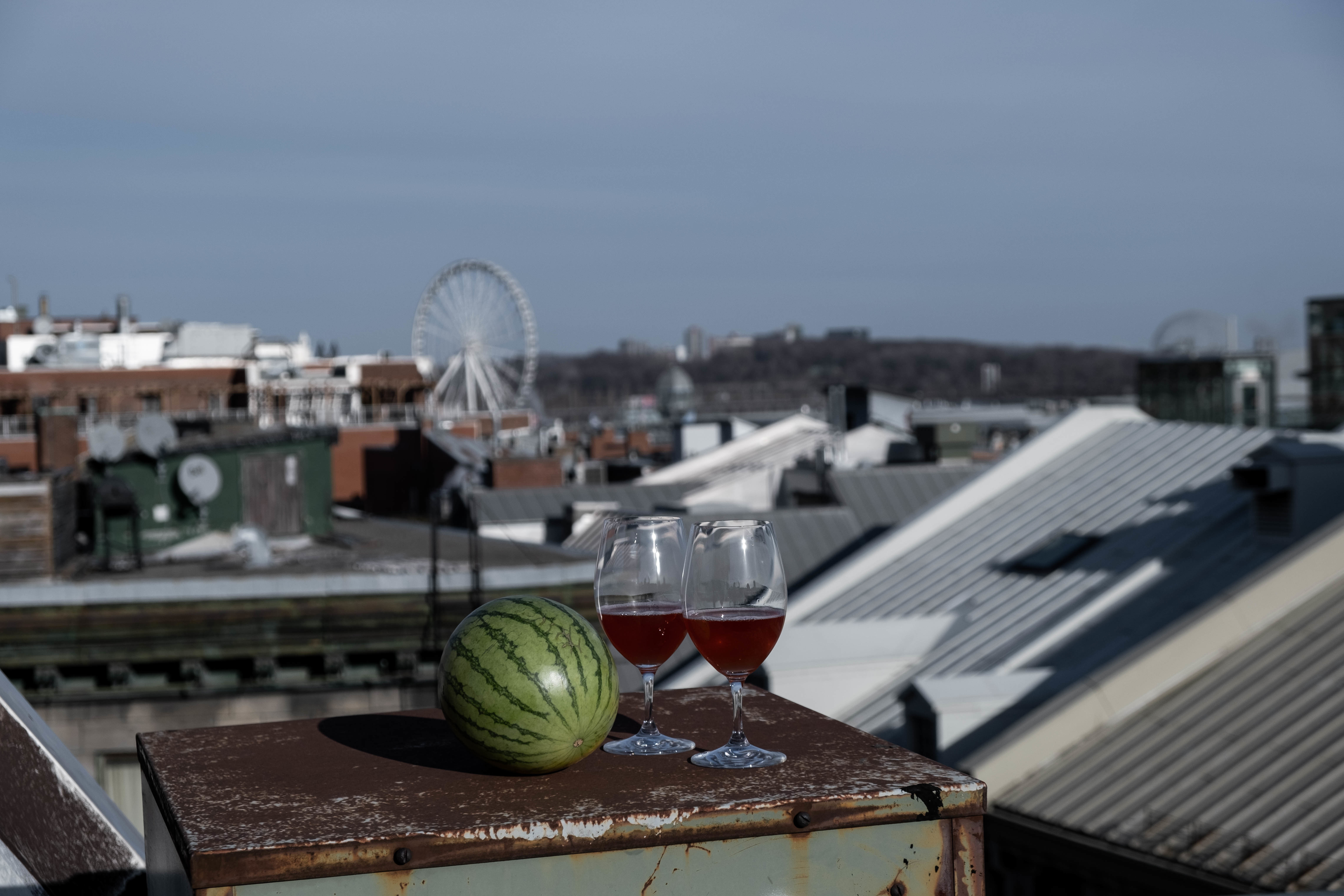 water melon with wine on old montreal roof top
