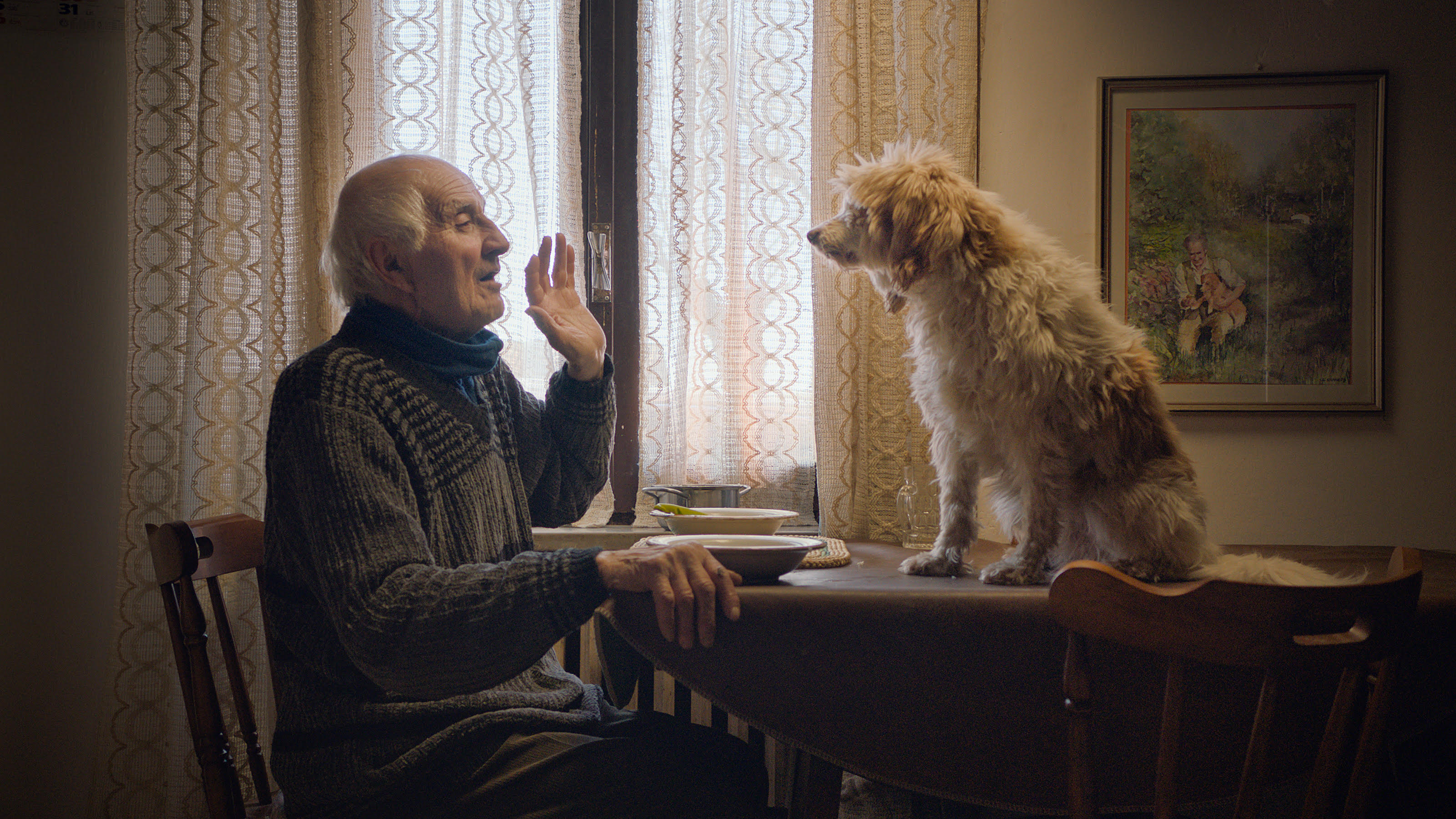 An elderly Italian man in a dining chair talks to a mid-sized shaggy dog that's sitting on the dining table.