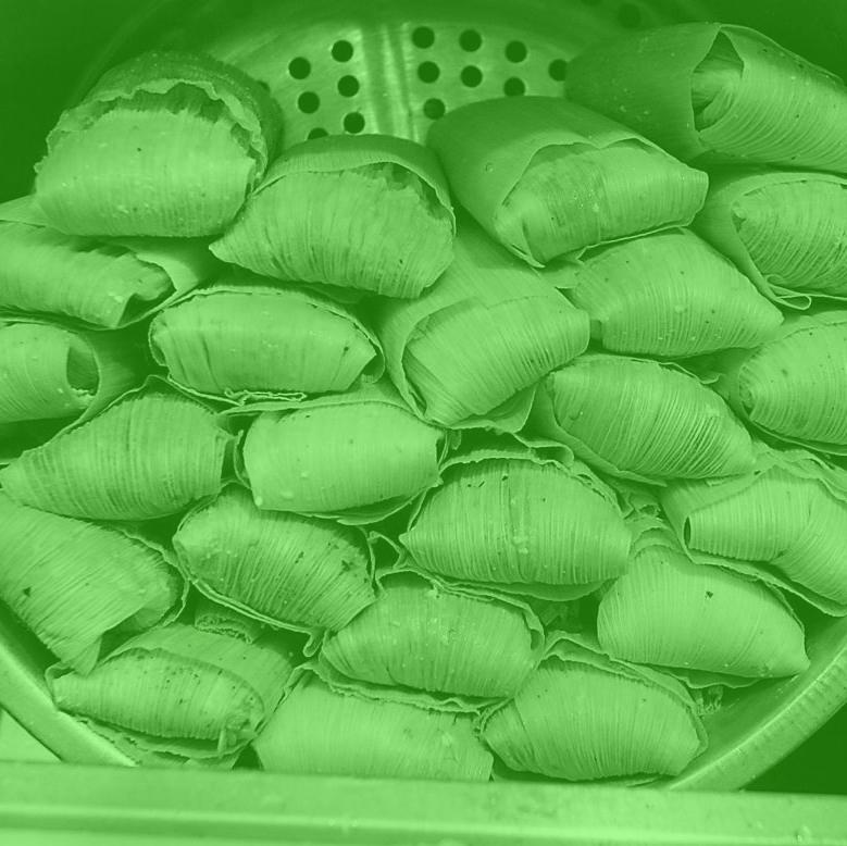 A stack of tamales with a green filter over the image.