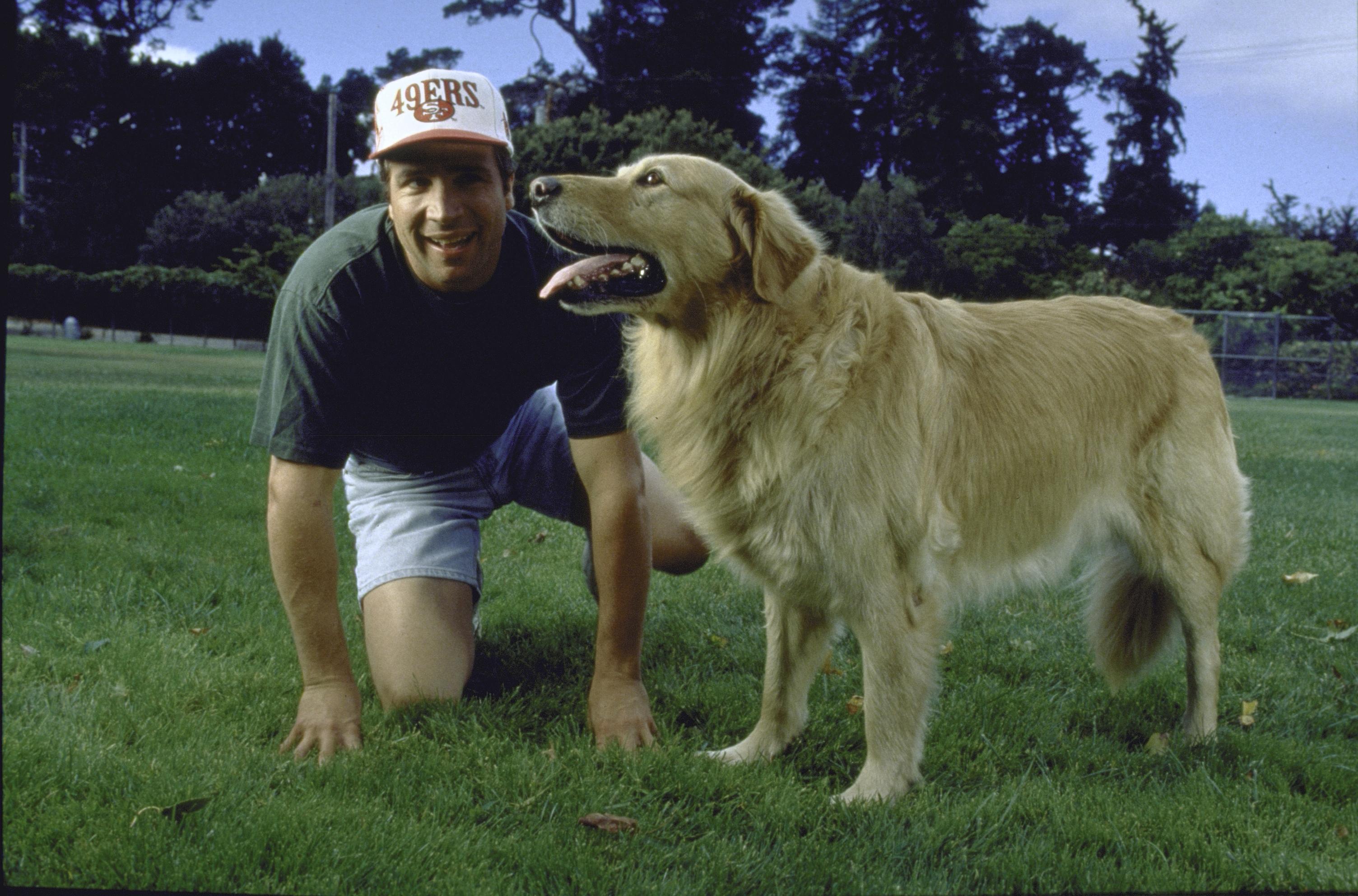 Golden retriever dog Buddy basketball-playing star of