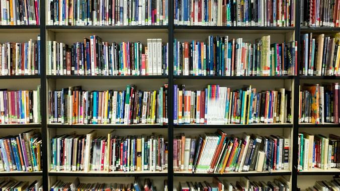 Books on a library bookshelf.