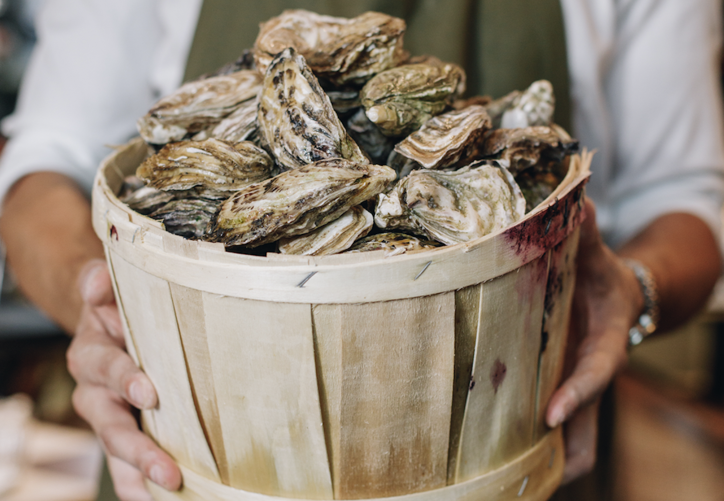 A man in a white shirt and green apron holds out a bucket of oysters in his hands