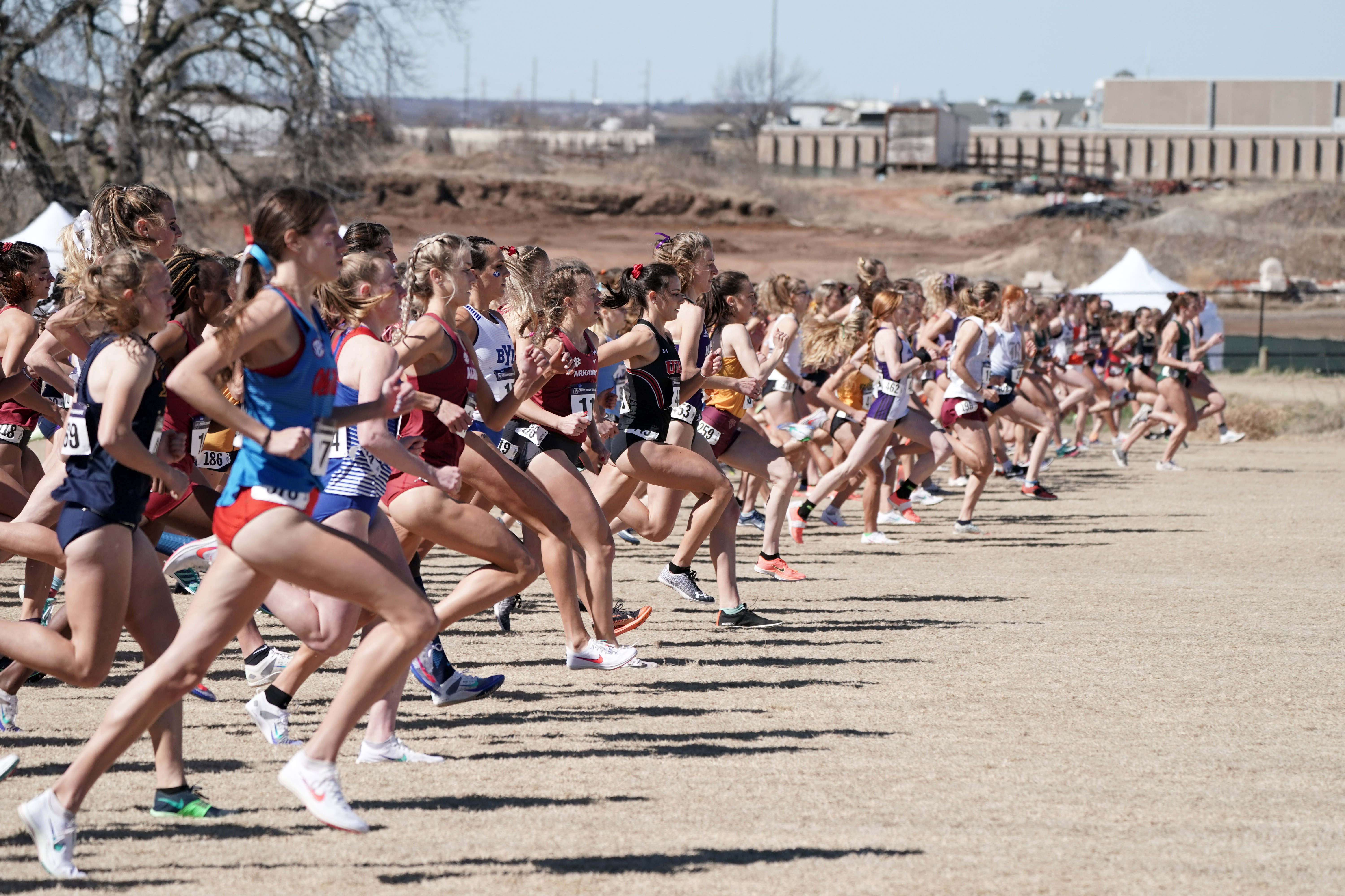 Cross Country: NCAA Division I Championships