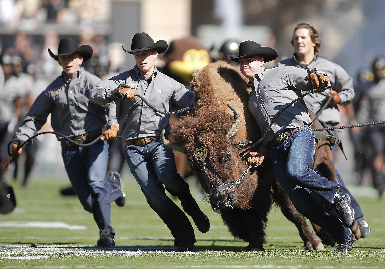 NCAA Football: Air Force at Colorado