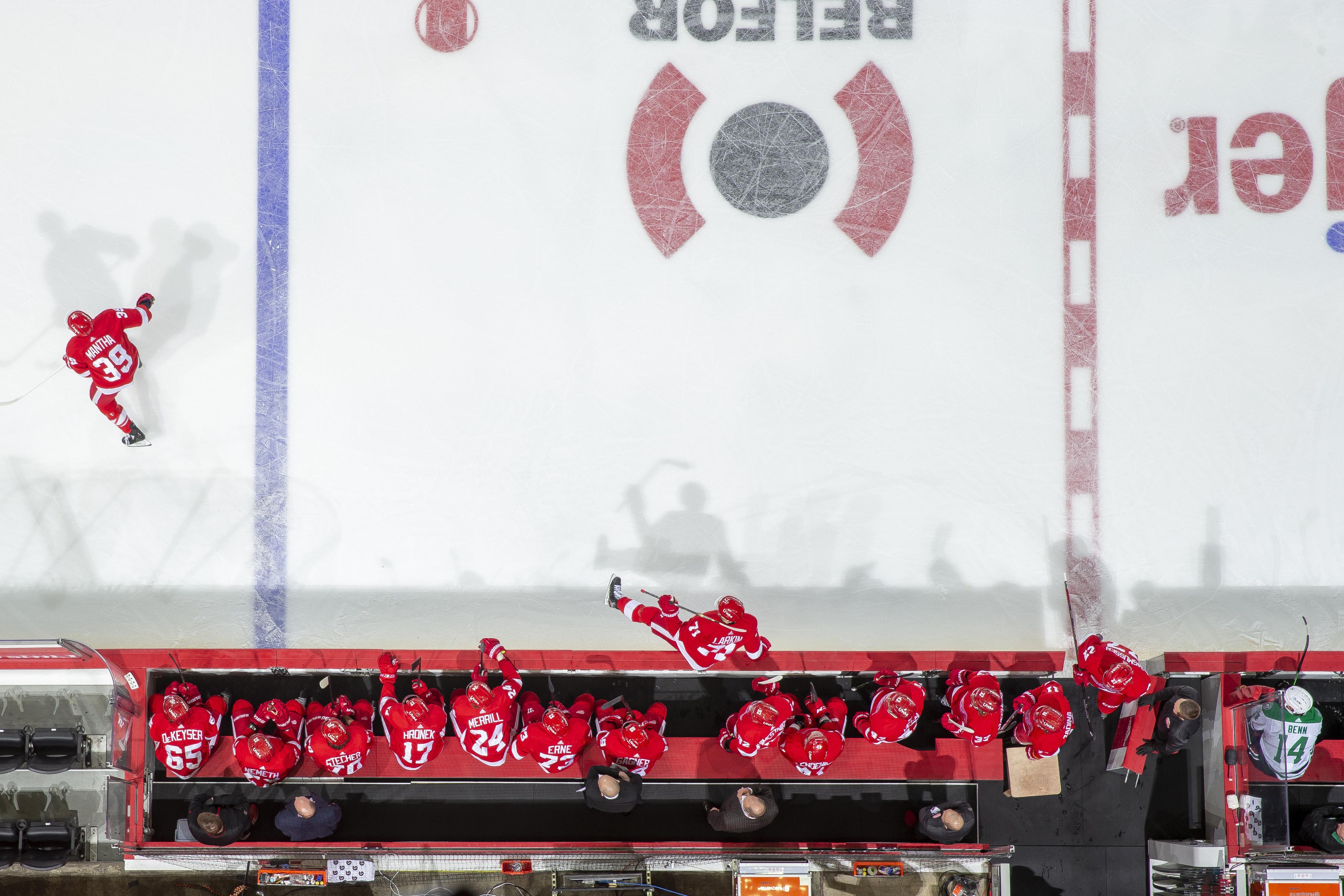 "Dallas Stars v Detroit Red Wings""n"
