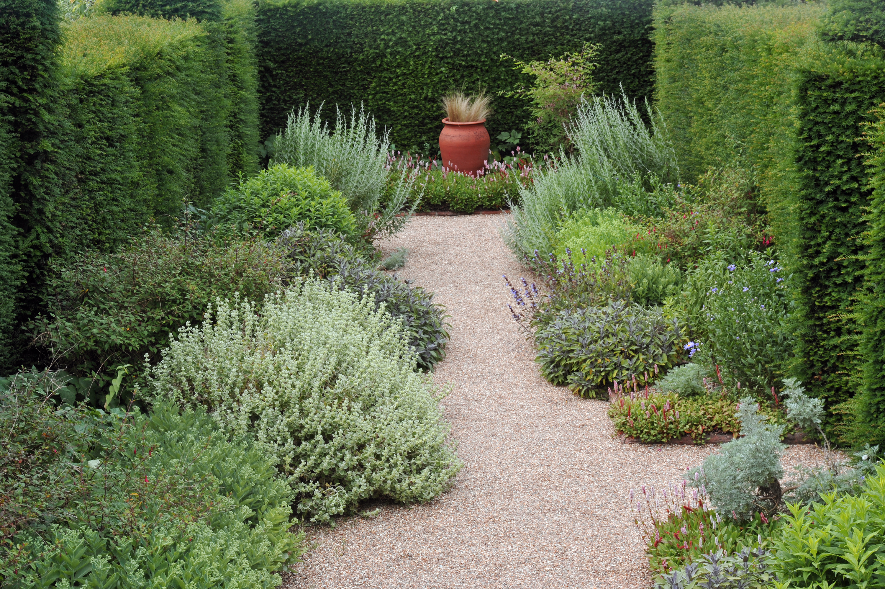 """""""Garden Path, England, English Culture, Flower, Flower Pot, Food And Drink, Formal Garden, Front or Back Yard, Fruits And Vegetables"""", Gardens, Hedge, Herb, Nature, Plant, Plants, Topiary, Yew Tree, gravel path"""