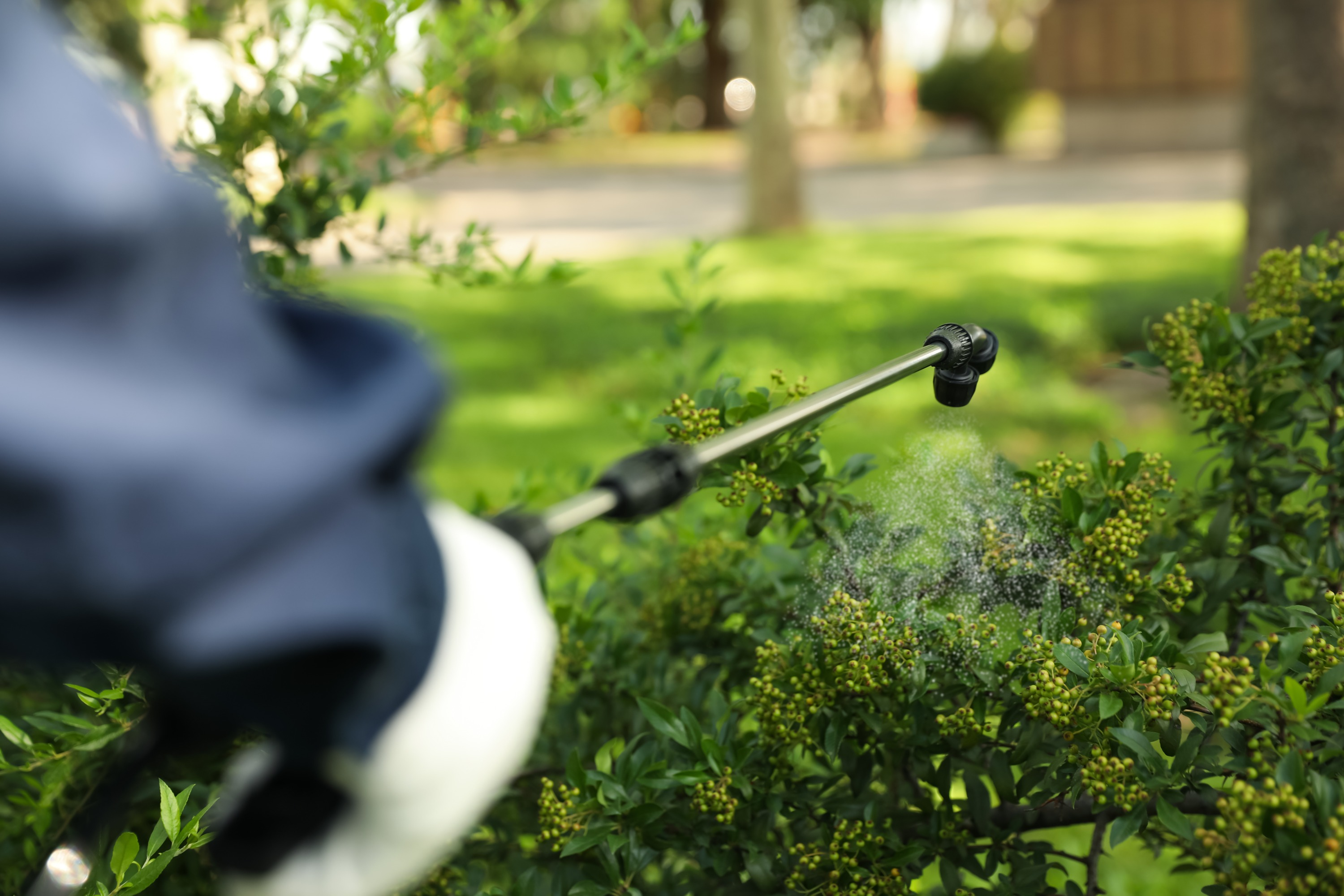 A pest control specialist wearing a navy blue shirt and white gloves uses a black wand to spray pest control solution onto green bushes.