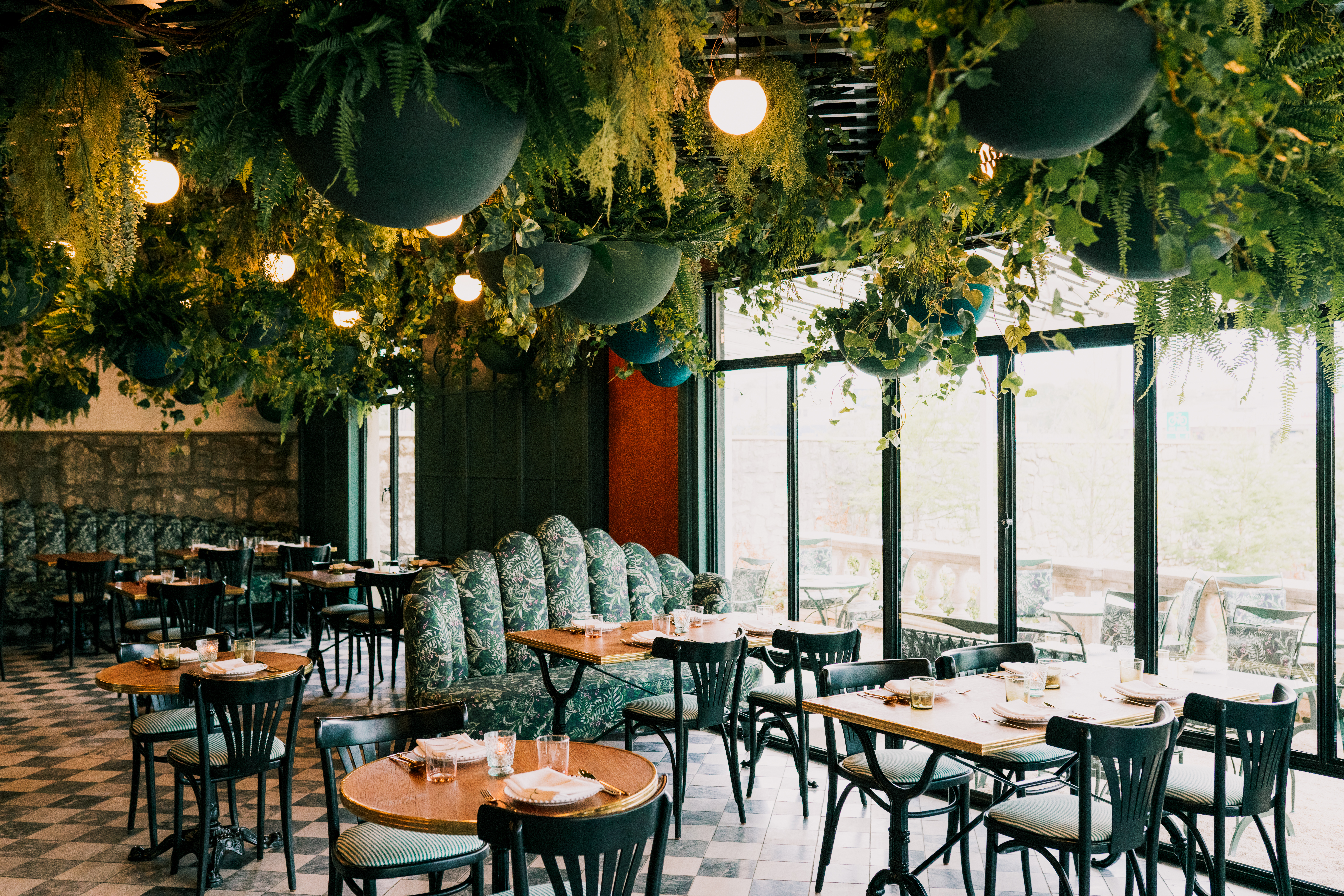 A lush canopy of houseplants hangs from the ceiling above tables in the Lutie's dining room.