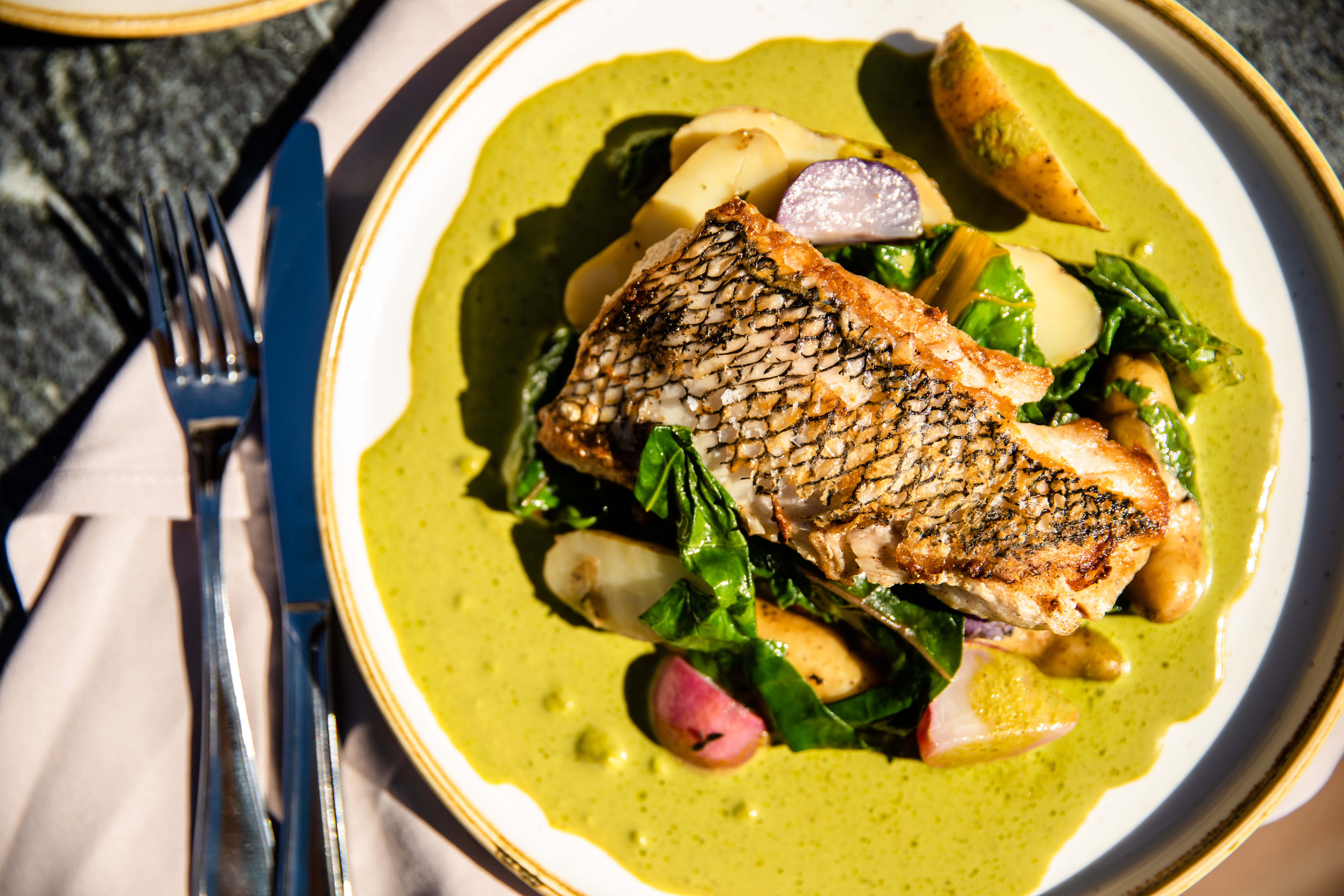 Seared black bass with rainbow chard, potatoes, radishes, green garlic-parsley jus that's bright yellow and shown from above.