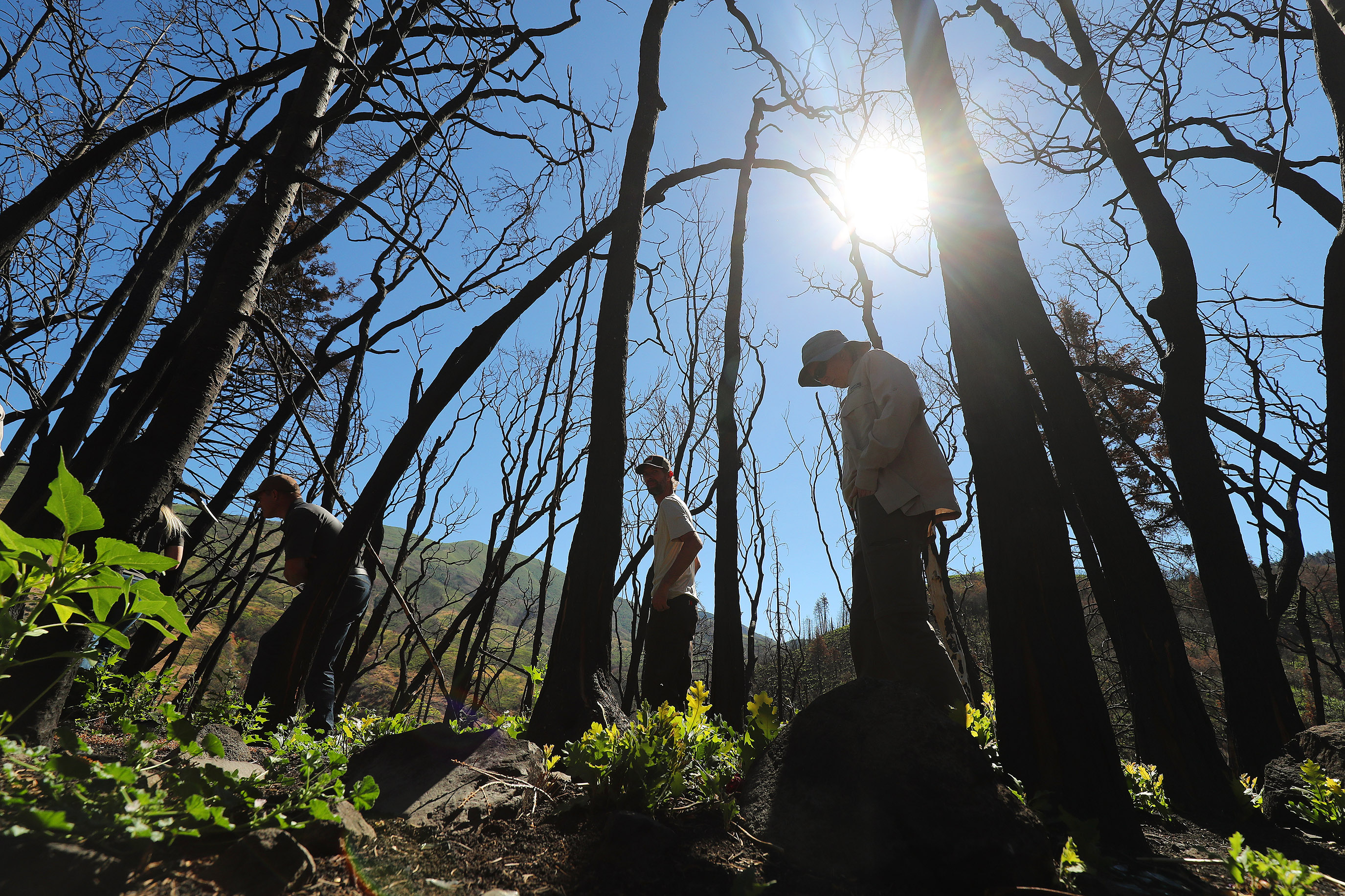Officials with the Bureau of Land Management, the Utah Department of Natural Resources, the Utah Division of Wildlife and the Forest Service tour areas affected by the Pole Creek and Bald Mountain fires in Utah County on Tuesday, July 16, 2019.