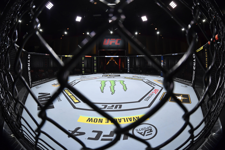 UFC 255: Figueiredo v Perez