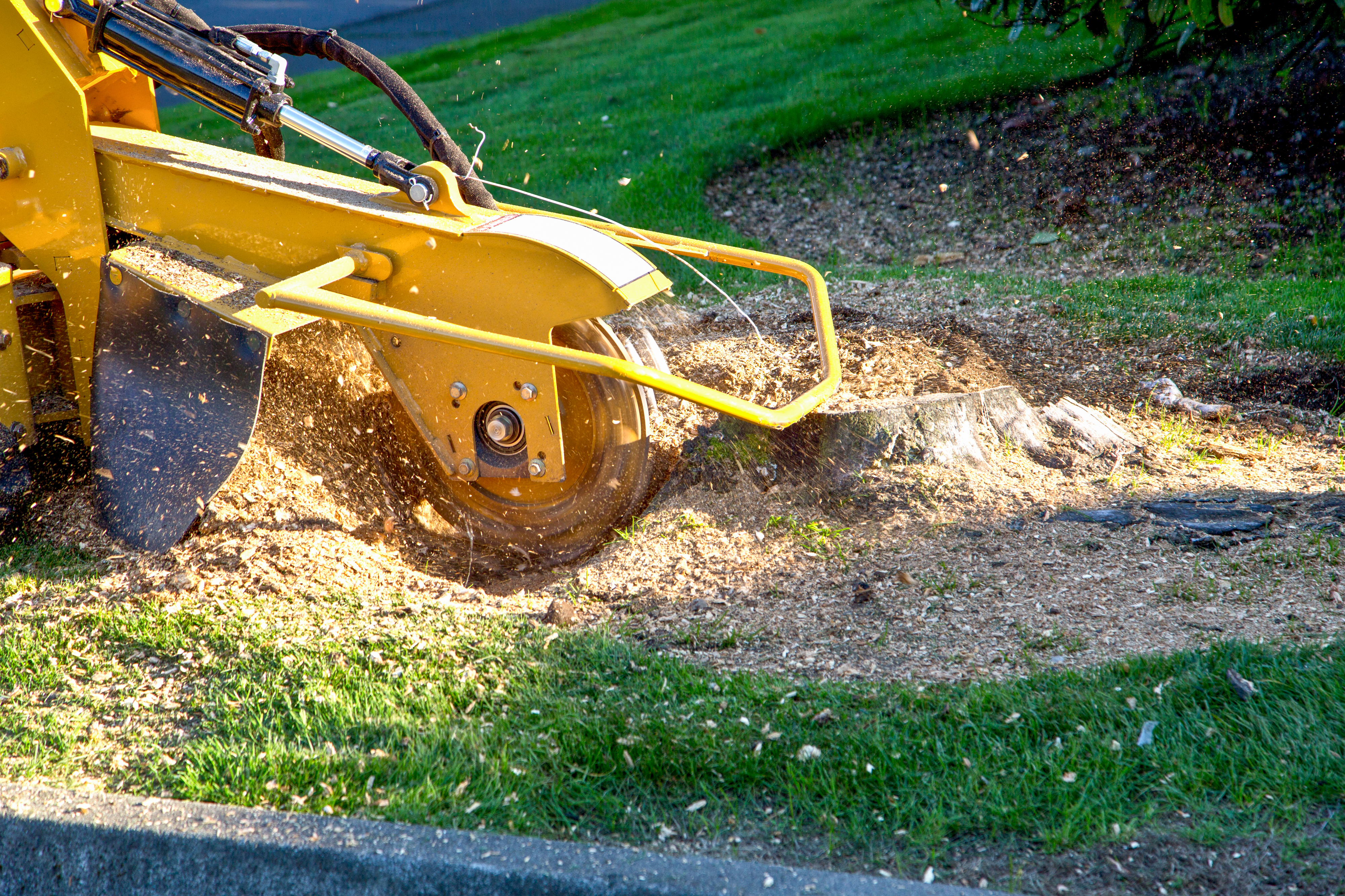 A large yellow machine removing a tree stump in a green yard.