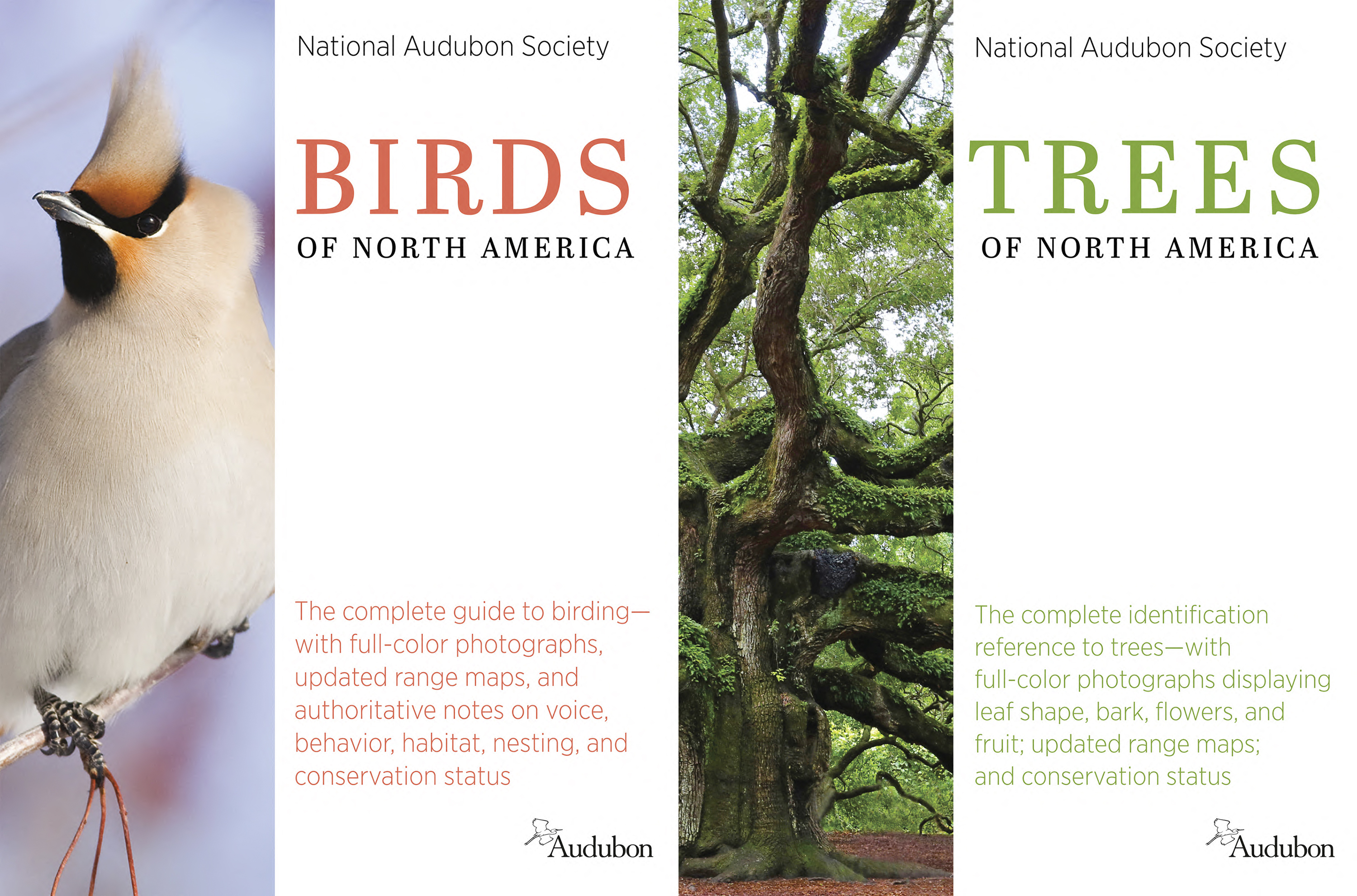 "The cover images of ""Birds of North America,""  and ""Trees of North America"" by the National Audubon Society."