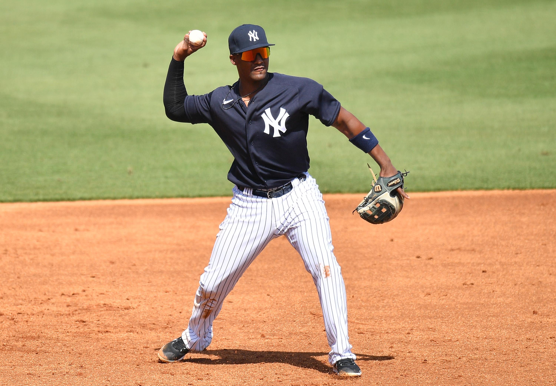 2021年3月5日,佛罗里达州坦帕市,乔治·m·斯坦布伦纳球场,纽约洋基队(New York Yankees)第41名对阵底特律老虎队(Detroit Tigers)的春训赛。