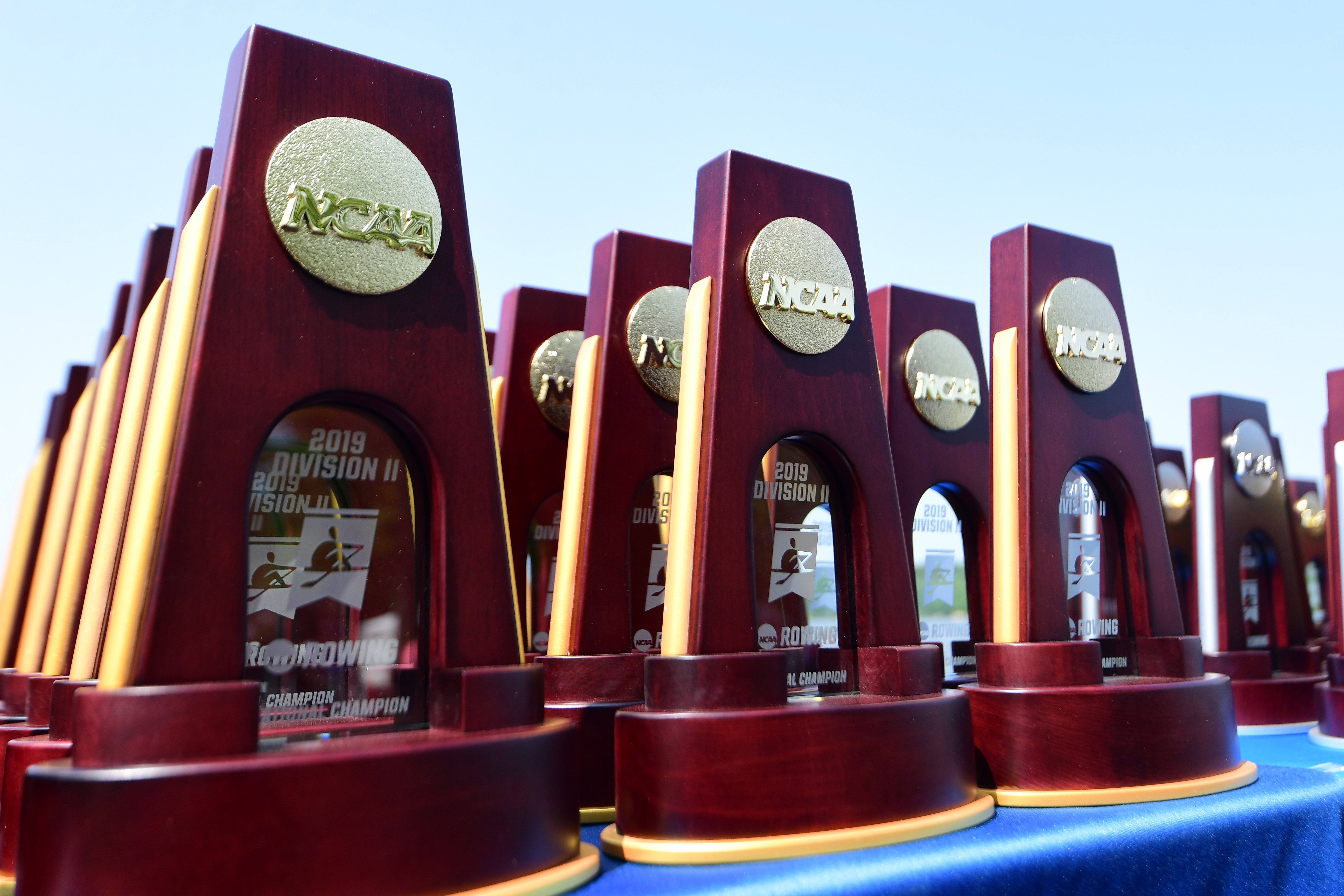2019 NCAA Division II Women's Rowing Championship
