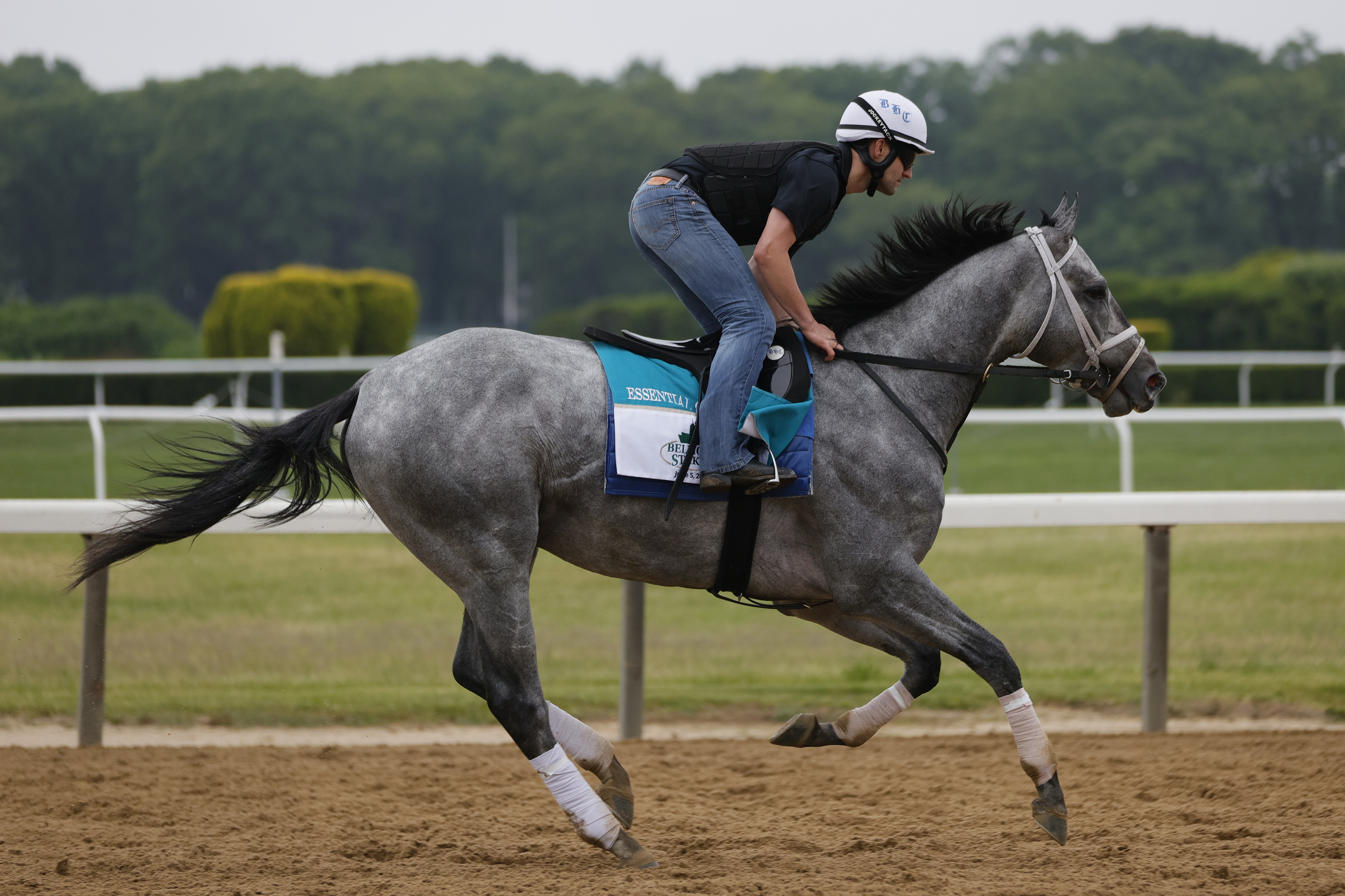 Essential Quality gallops during morning workouts prior to the 153rd running of the Belmont Stakes at Belmont Park on June 03, 2021 in Elmont, New York.