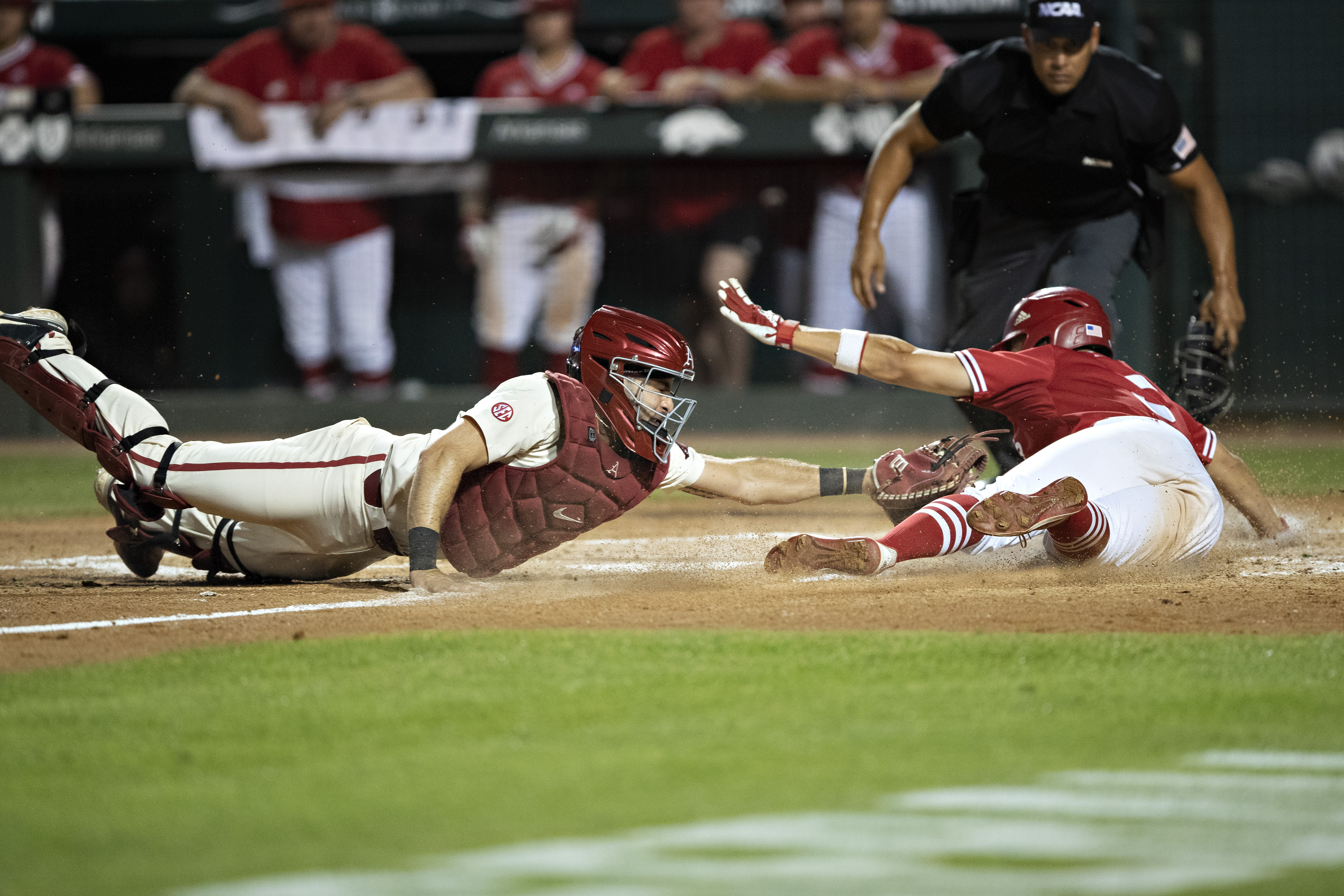 NCAA Baseball Regional - Fayetteville