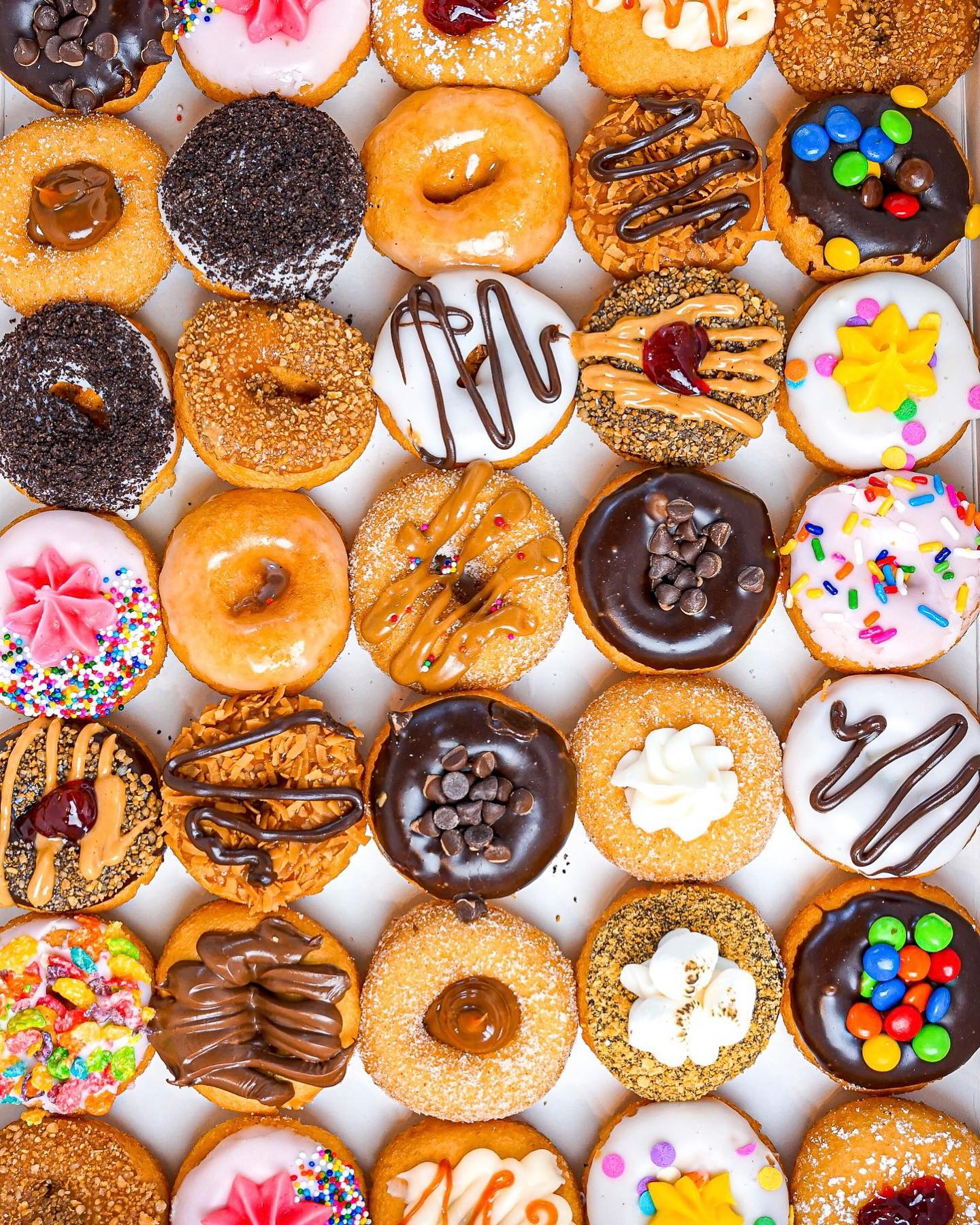 Doughnuts lined up five across