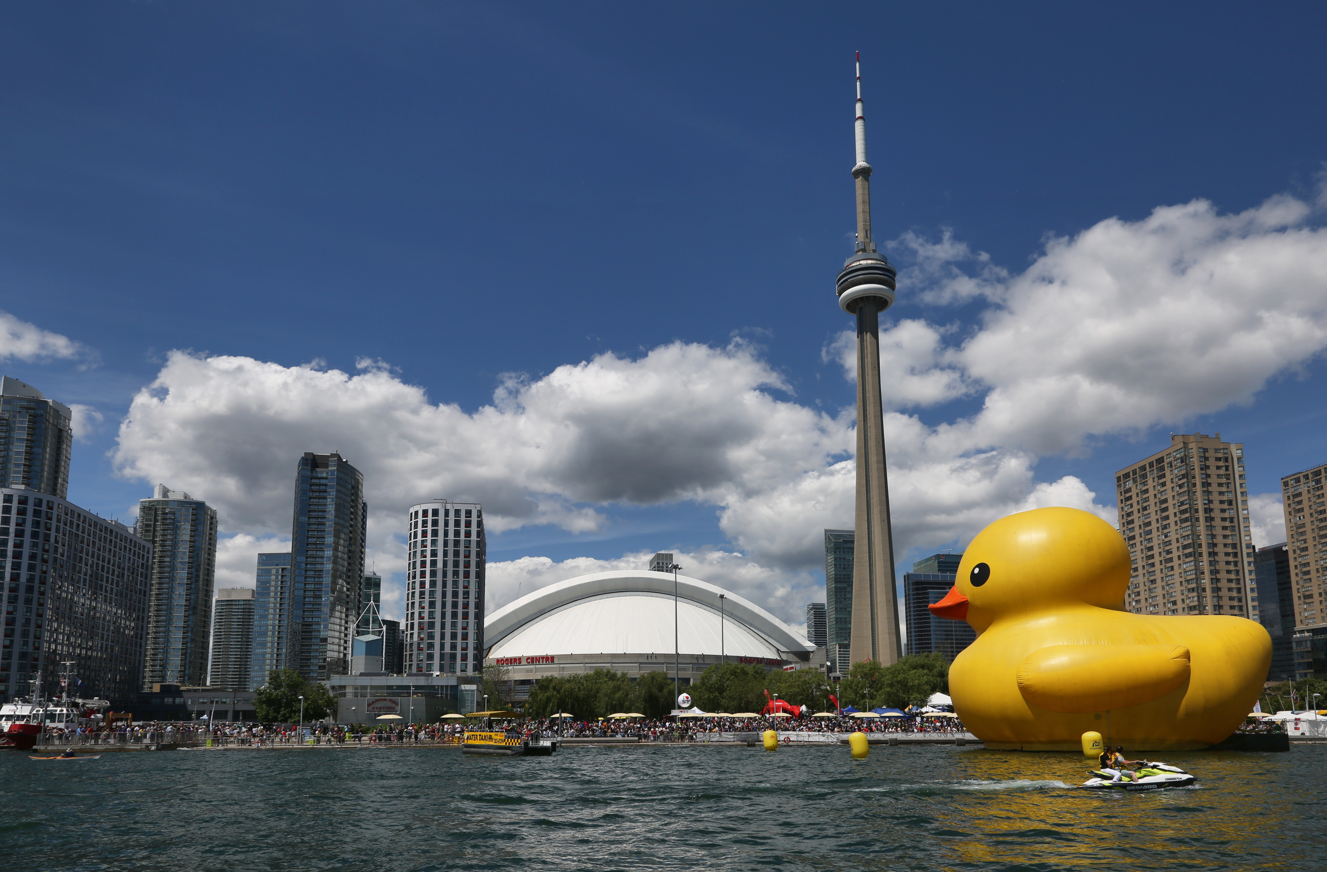 World's Largest Rubber Duck in Toronto