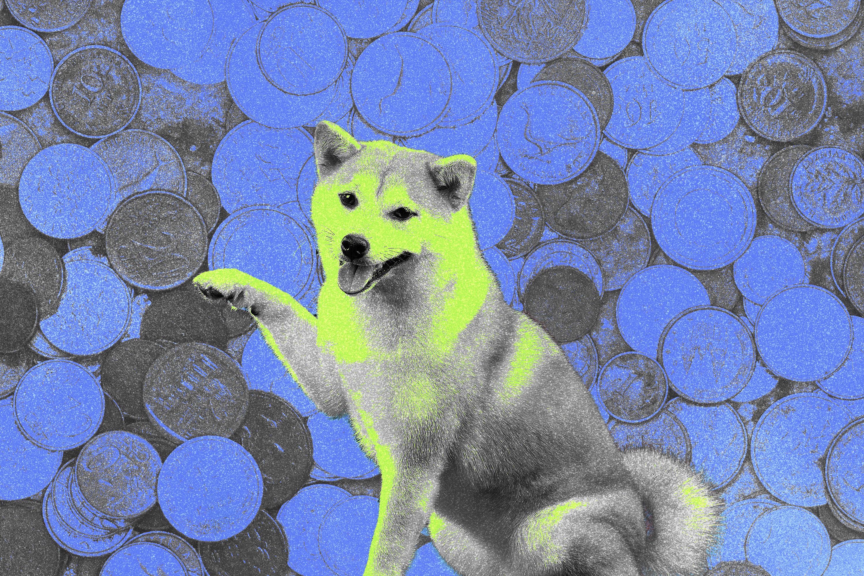 A Shiba Inu dog, which represents Dogecoin.