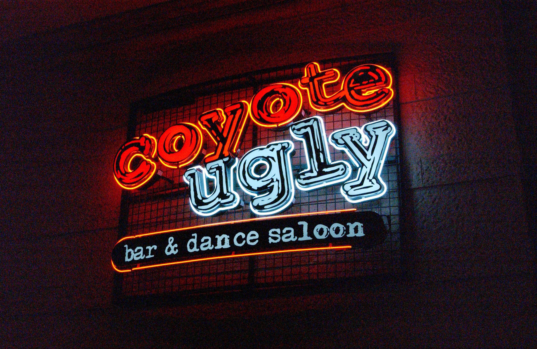 """霓虹招牌上写着""""土狼丑陋酒吧""""。""""舞蹈沙龙""""红蓝字体"""