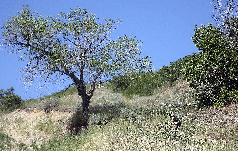 A mountain biker rides up City Creek Canyon in Salt Lake City.