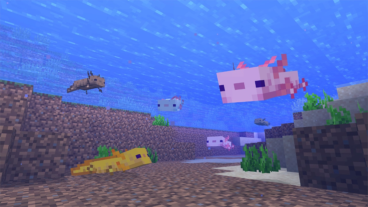 blocky axolotls swim around the water. there's a pink one and a yellow one. they have cute dotted eyes