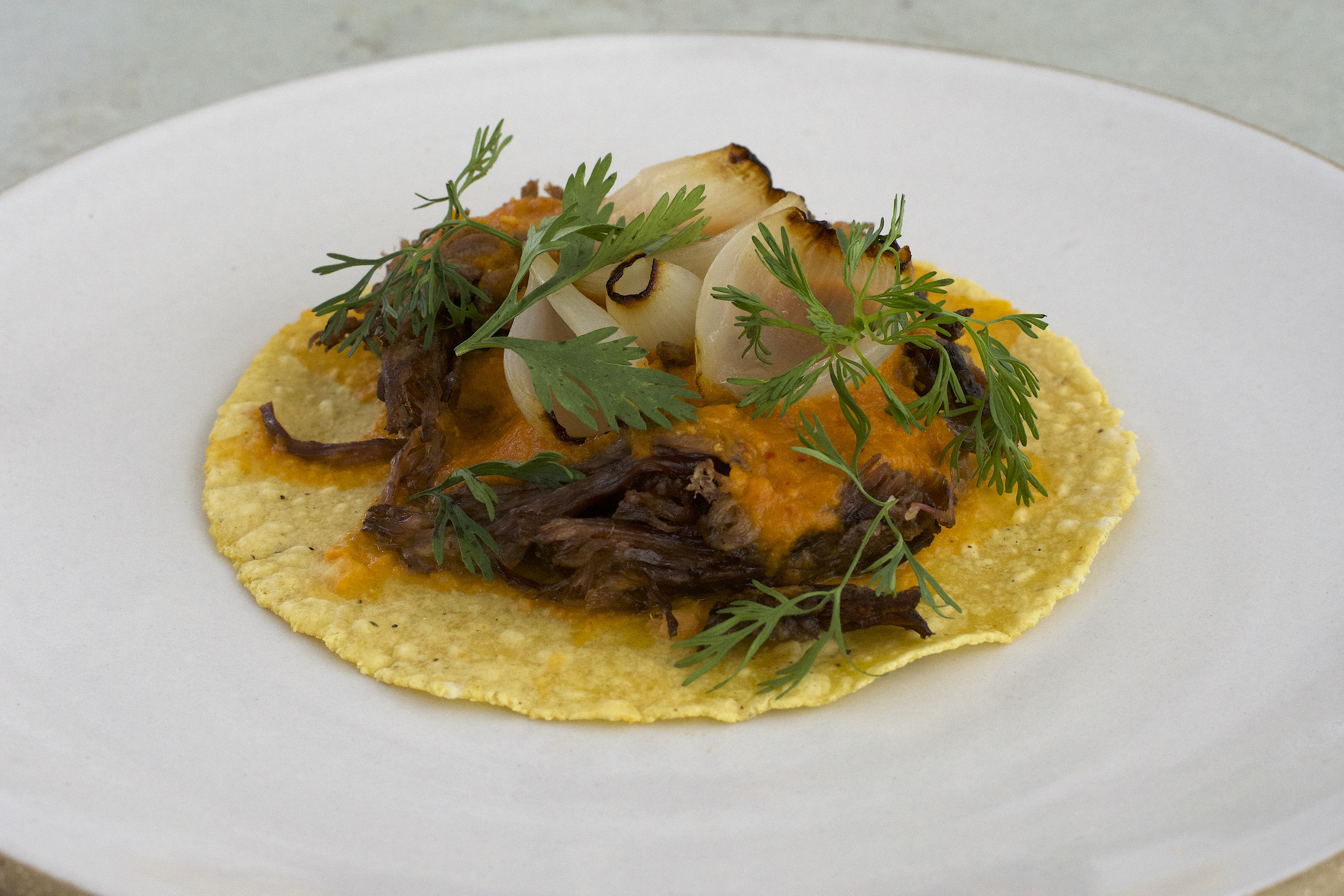 Stringy short rib, cilantro, salsa, and pickled vegetables appear on a bumpy yellow corn tortilla in the center of a larger white plate