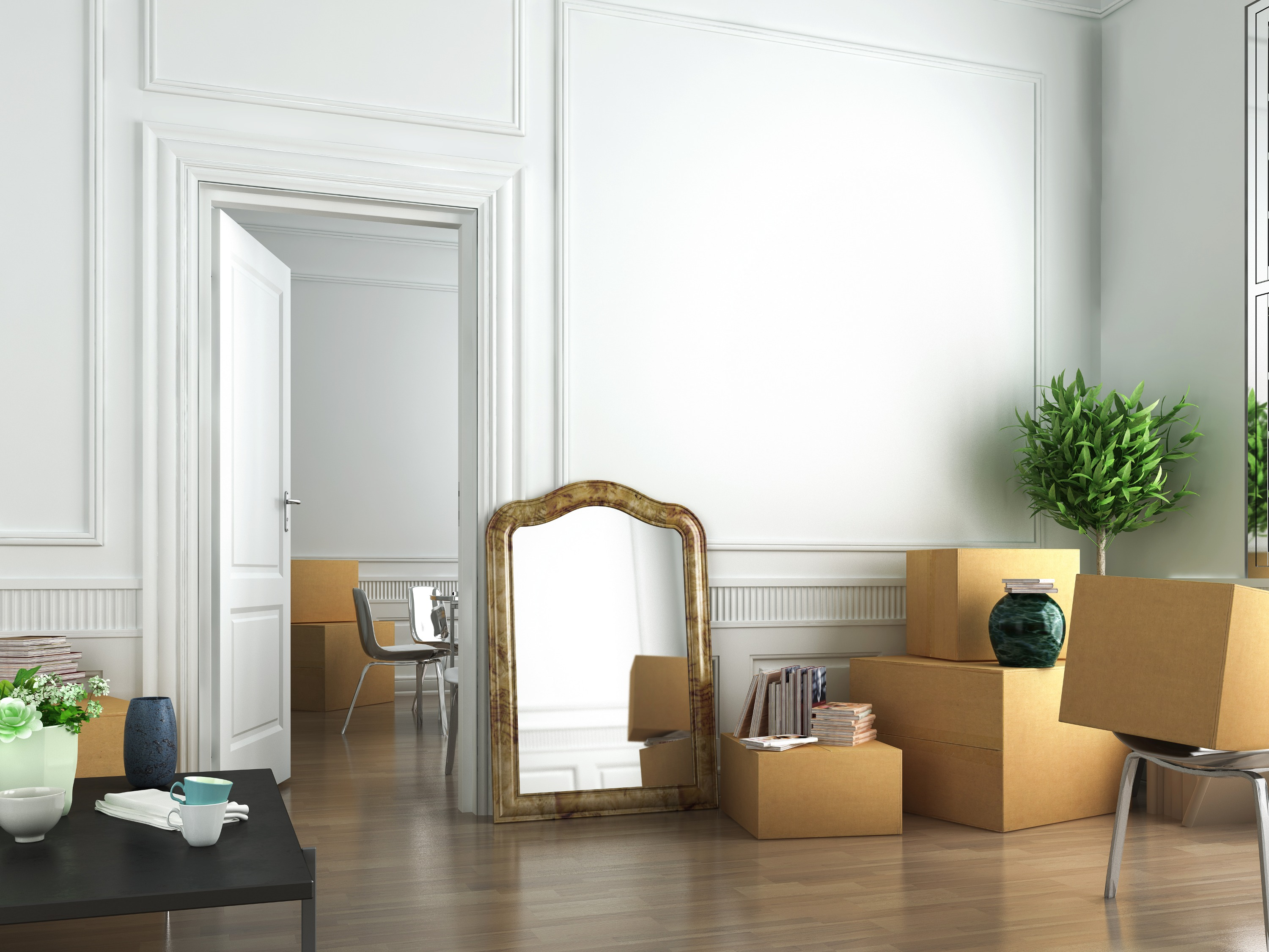 A white apartment with brown cardboard boxes, a mirror, and a green plant.