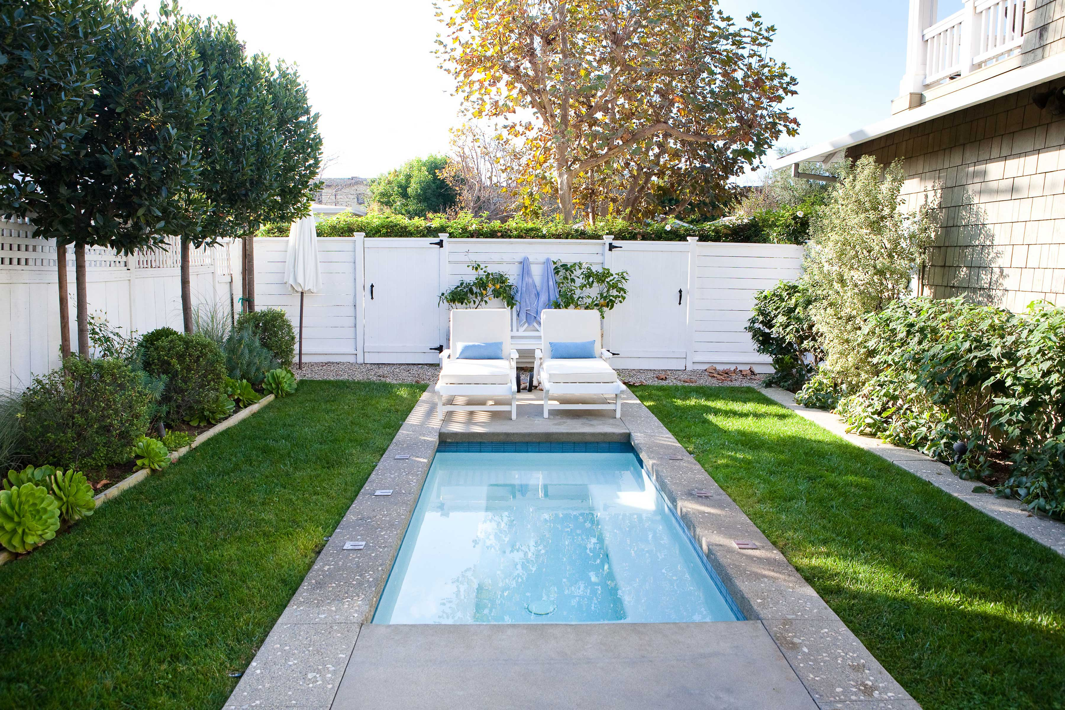 Backyard plunge pool surrounded by green landscaping and two lounge chairs.
