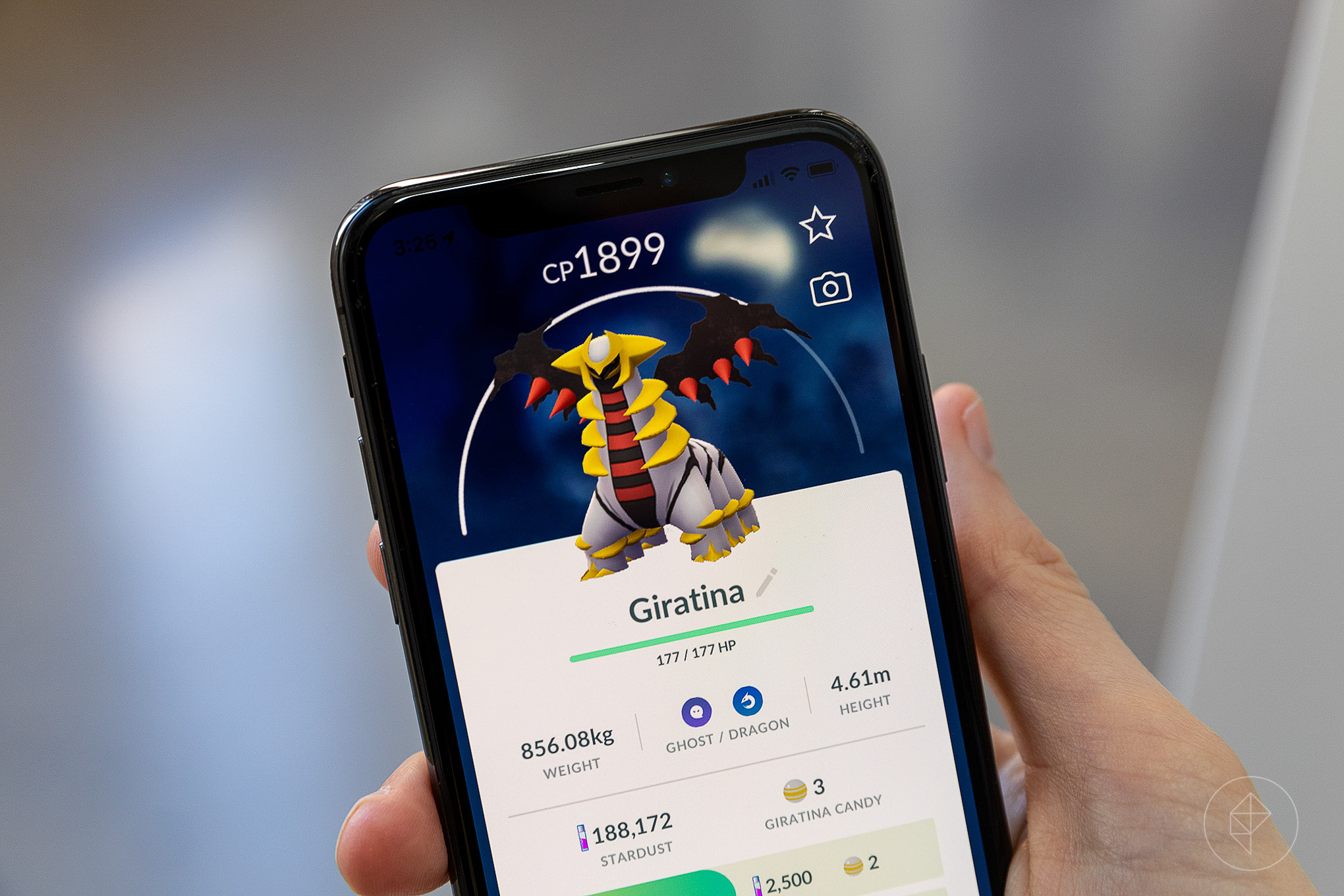A hand holds up an iPhone displaying Altered Forme Giratina's stat screen in Pokémon Go