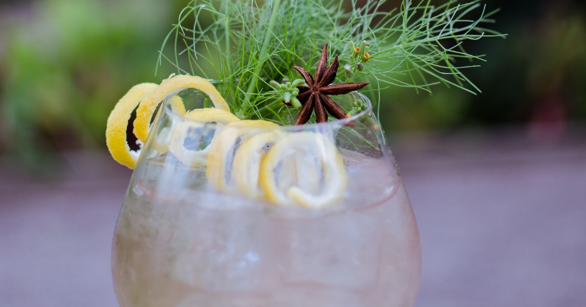 a gin and tonic with a spiraled lemon peel, a star anise, and garnished with dill in a goblet glass
