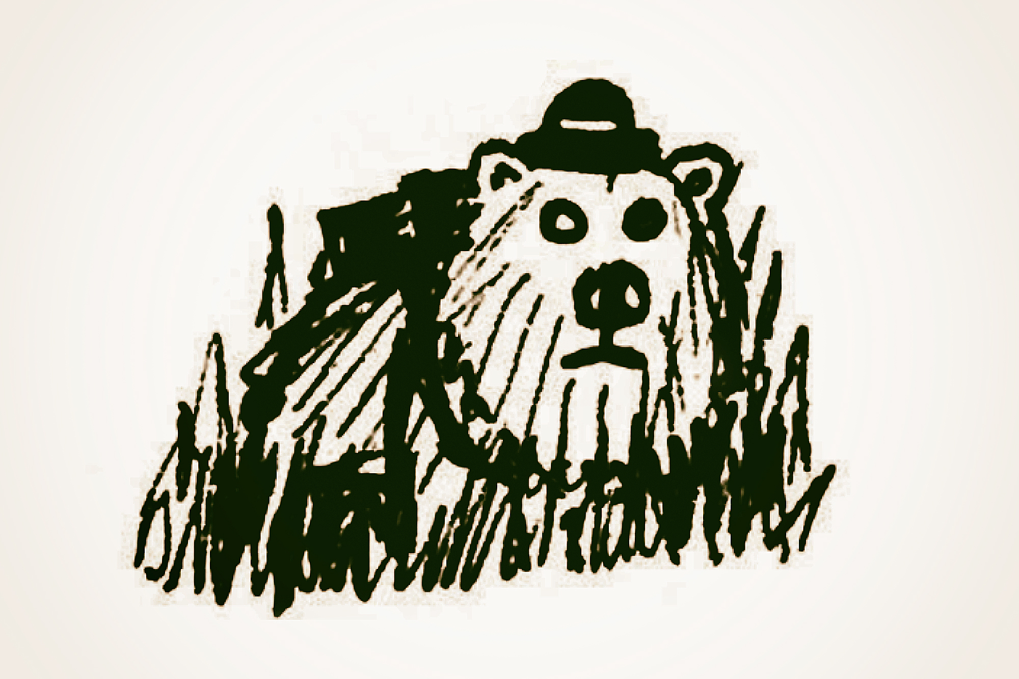 sketch of a bear with a hat