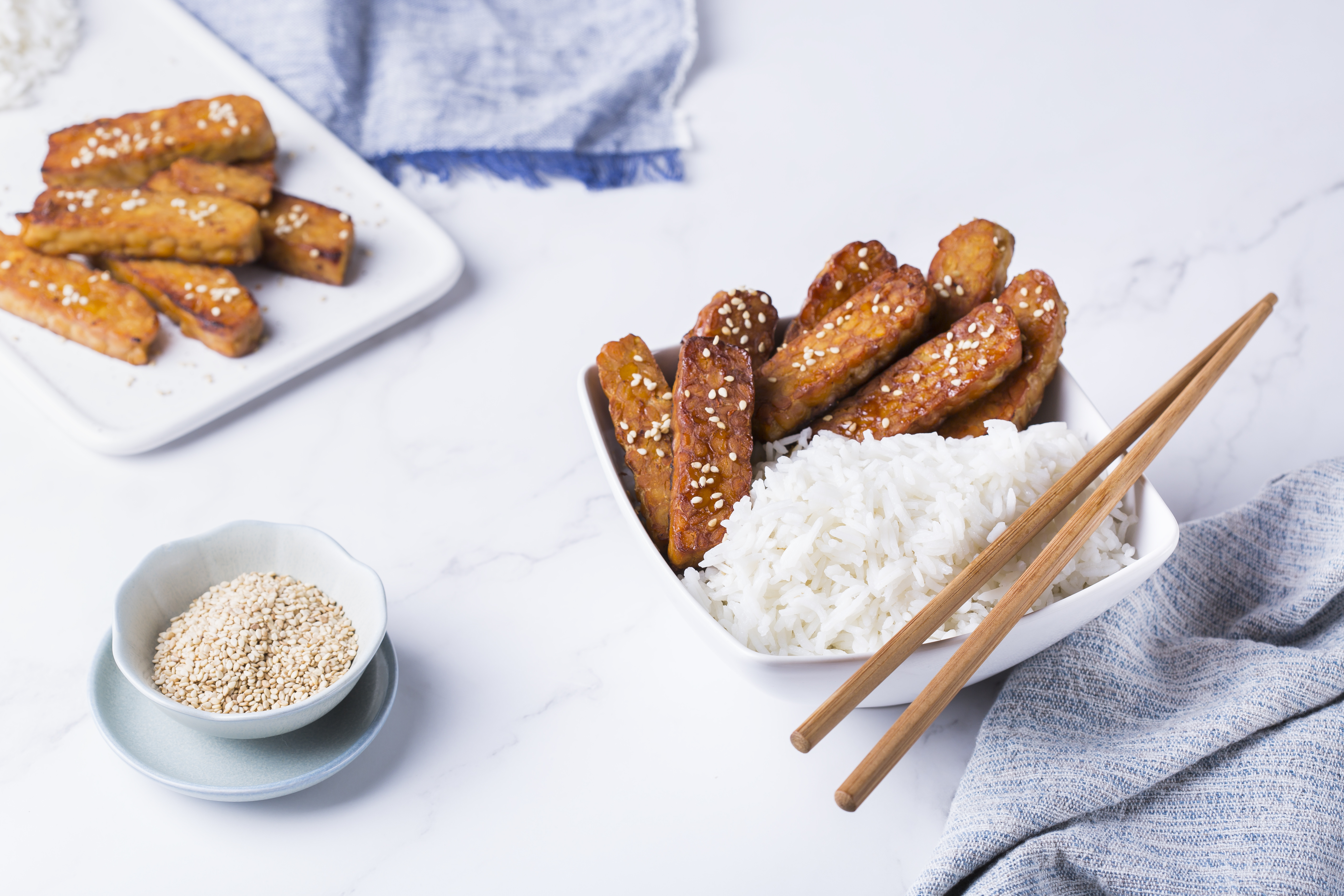 The word probiotics refers to the beneficial microbes found in certain fermented foods such as this fried tempeh, which is derived from soybeans, and beverages, as well in specially formulated nutritional supplements.