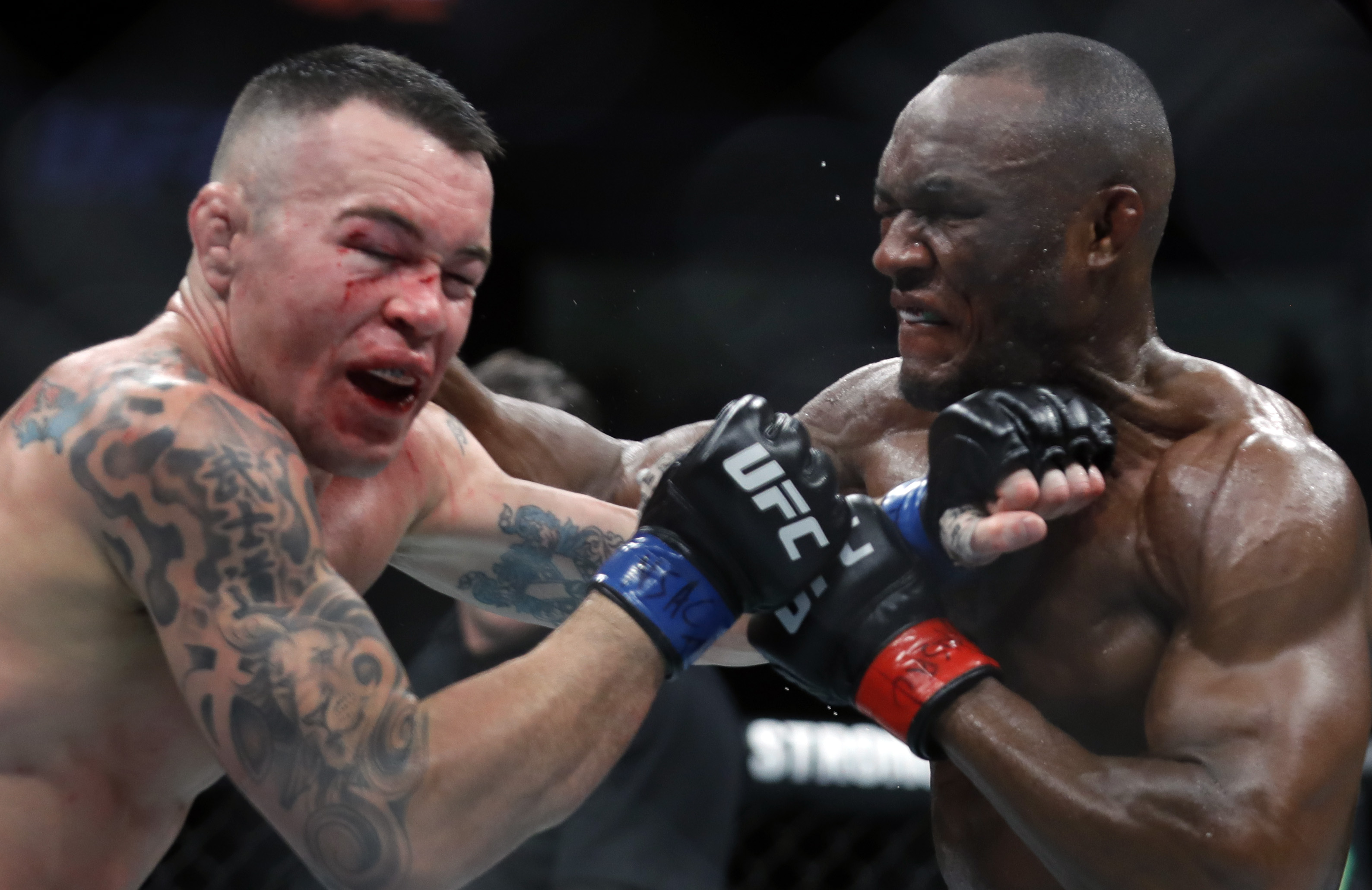 UFC 245 Kamaru Usman Colby Covinton Joe Rogan