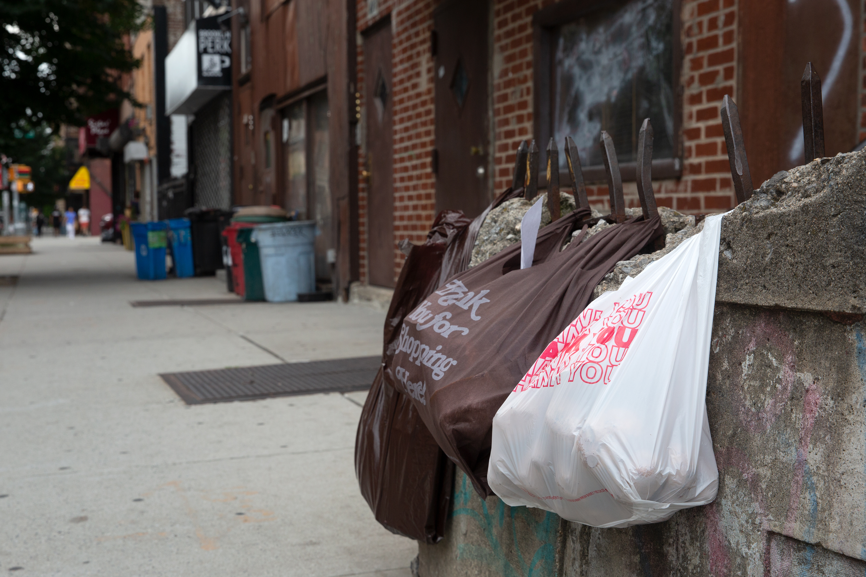 Plastic bags hang out with a reusable bag in Bed-Stuy, Brooklyn, July 22, 2021.