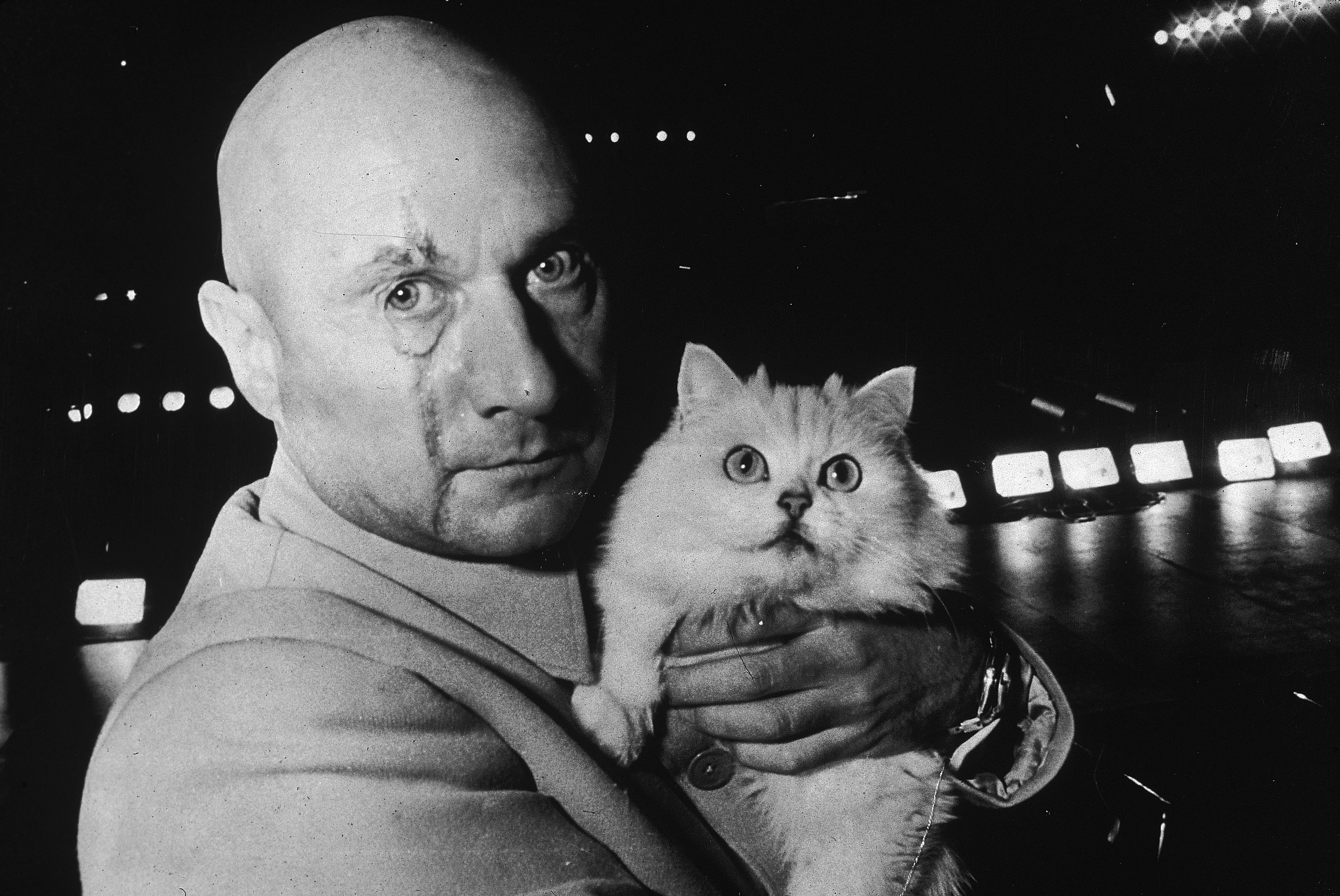 Donald Pleasence as Ernst Stavro Blofeld, holding a white cat, on the set of the James Bond film You Only Live Twice