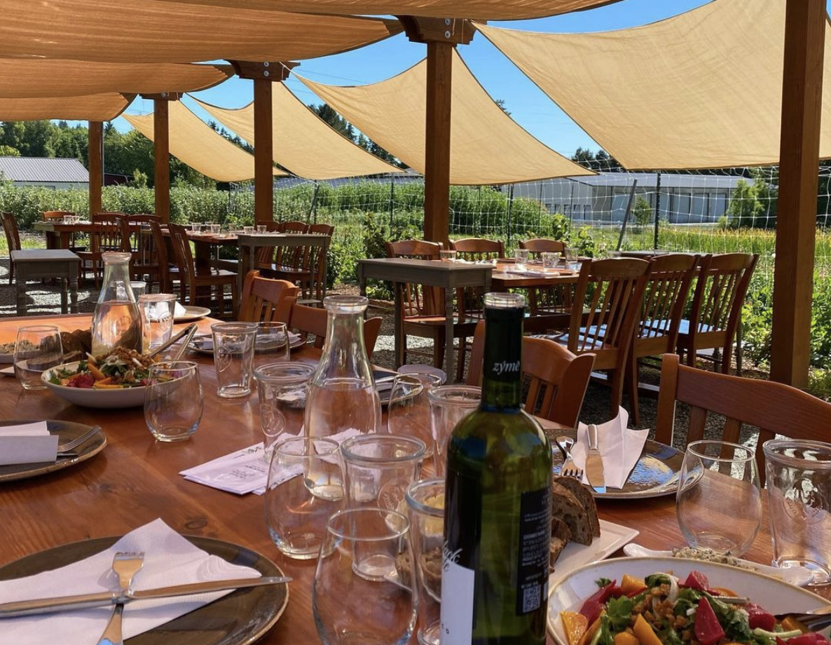 A long wooden dinner table with wine glasses on an outdoor patio shaded with beige canvas and a large garden in the background