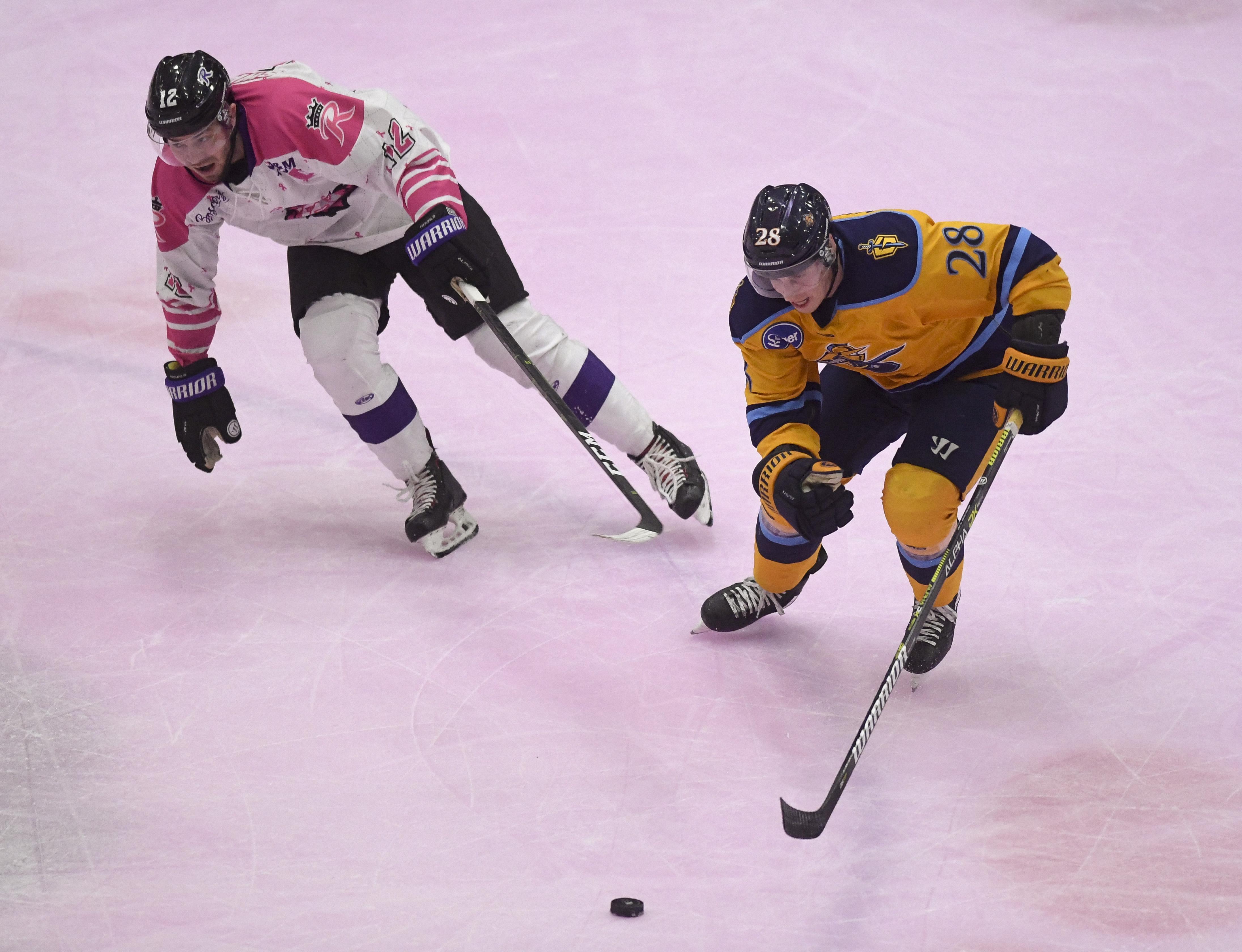 Ice Hockey Reading Royals Vs Atlanta Gladiators