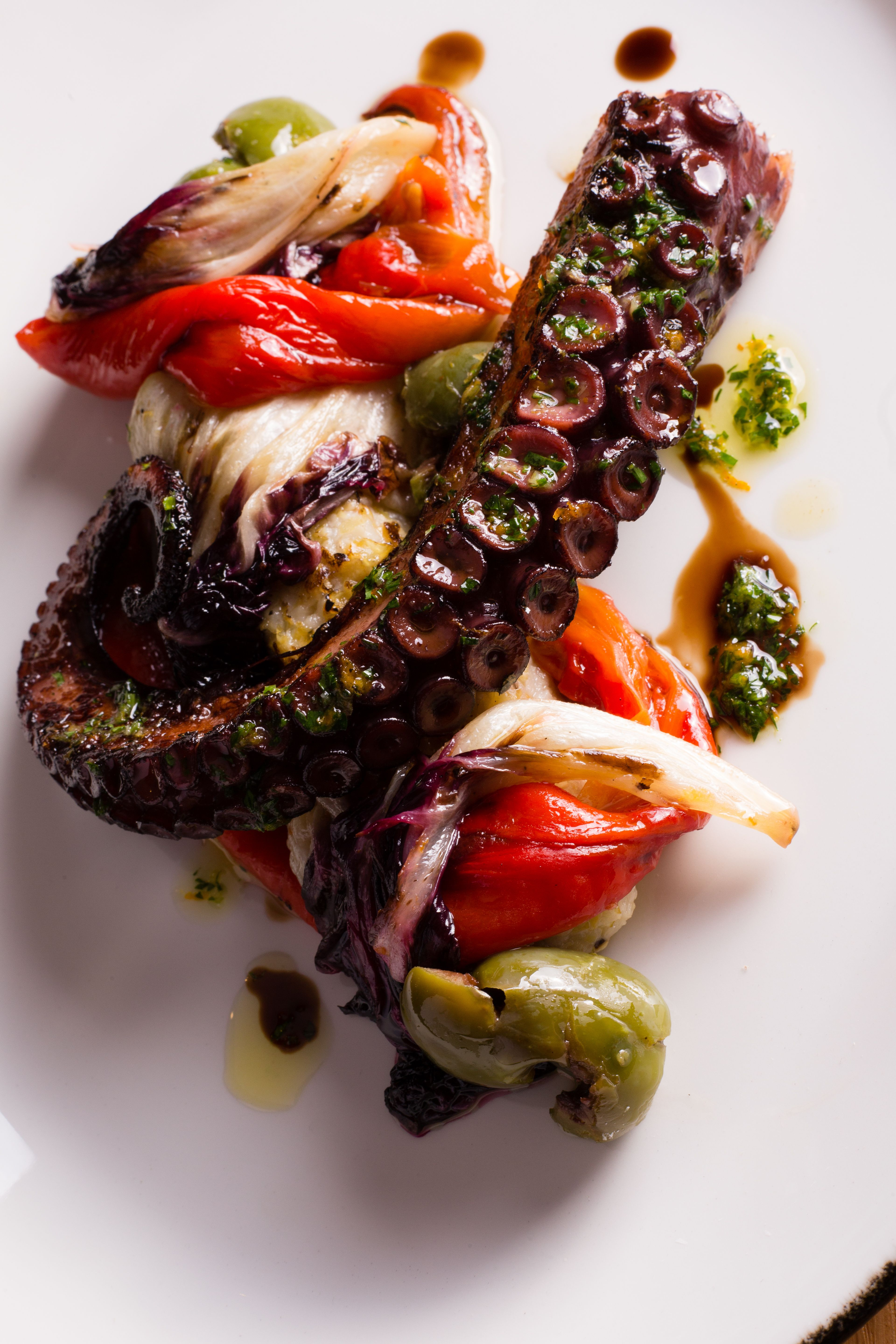 plated octopus