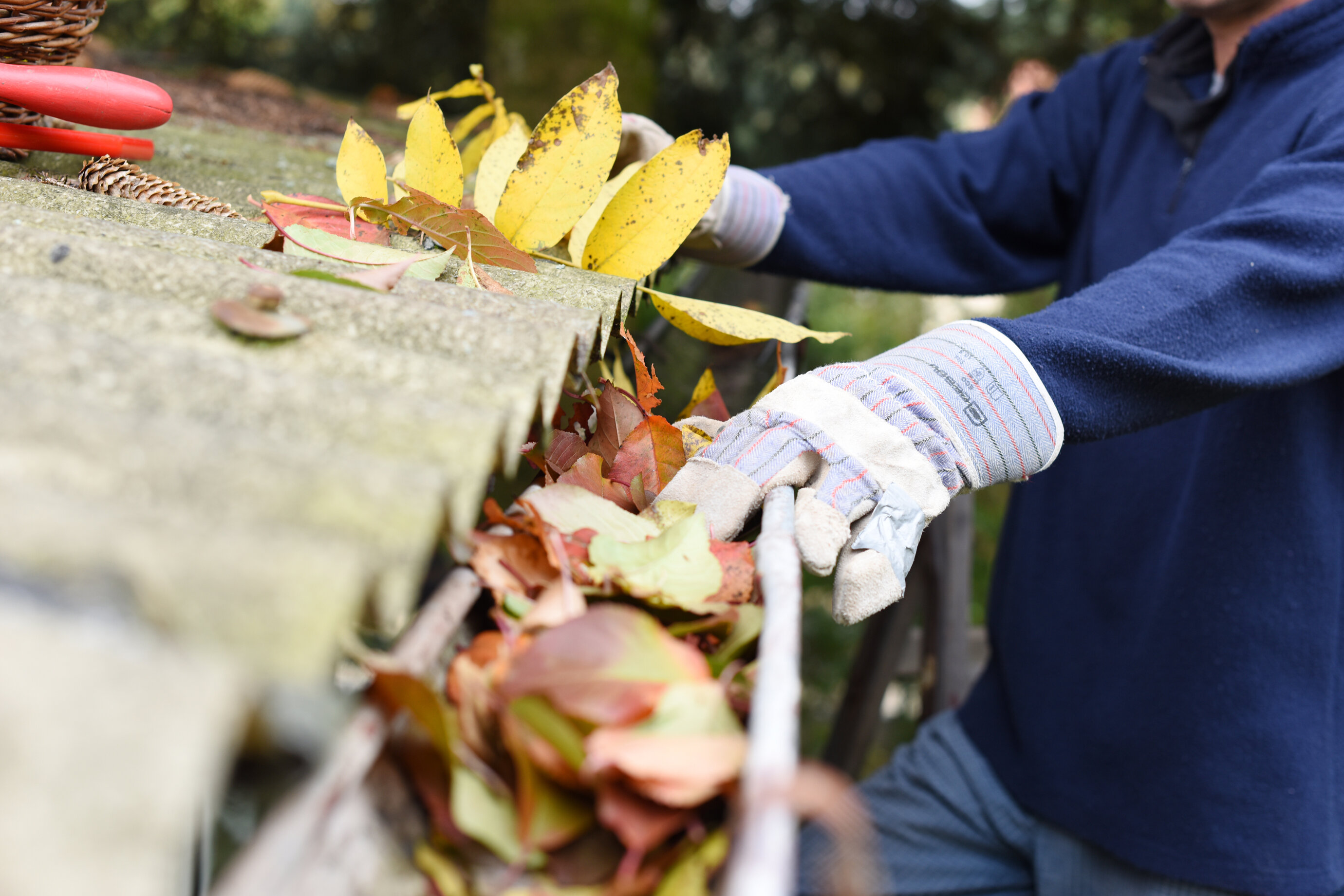 A professional wearing gloves and a navy blue shirt cleans fall leaves out of a gutter.