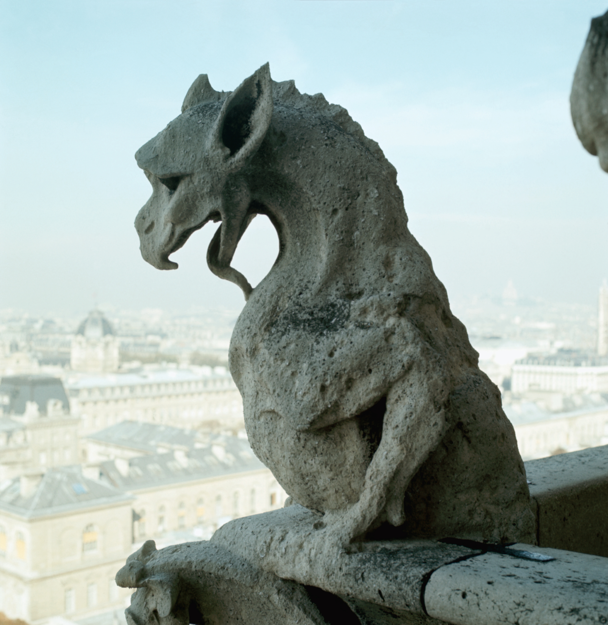 Detail of Gargoyle from Gargoyle Sculptures at Notre Dame Cathedral