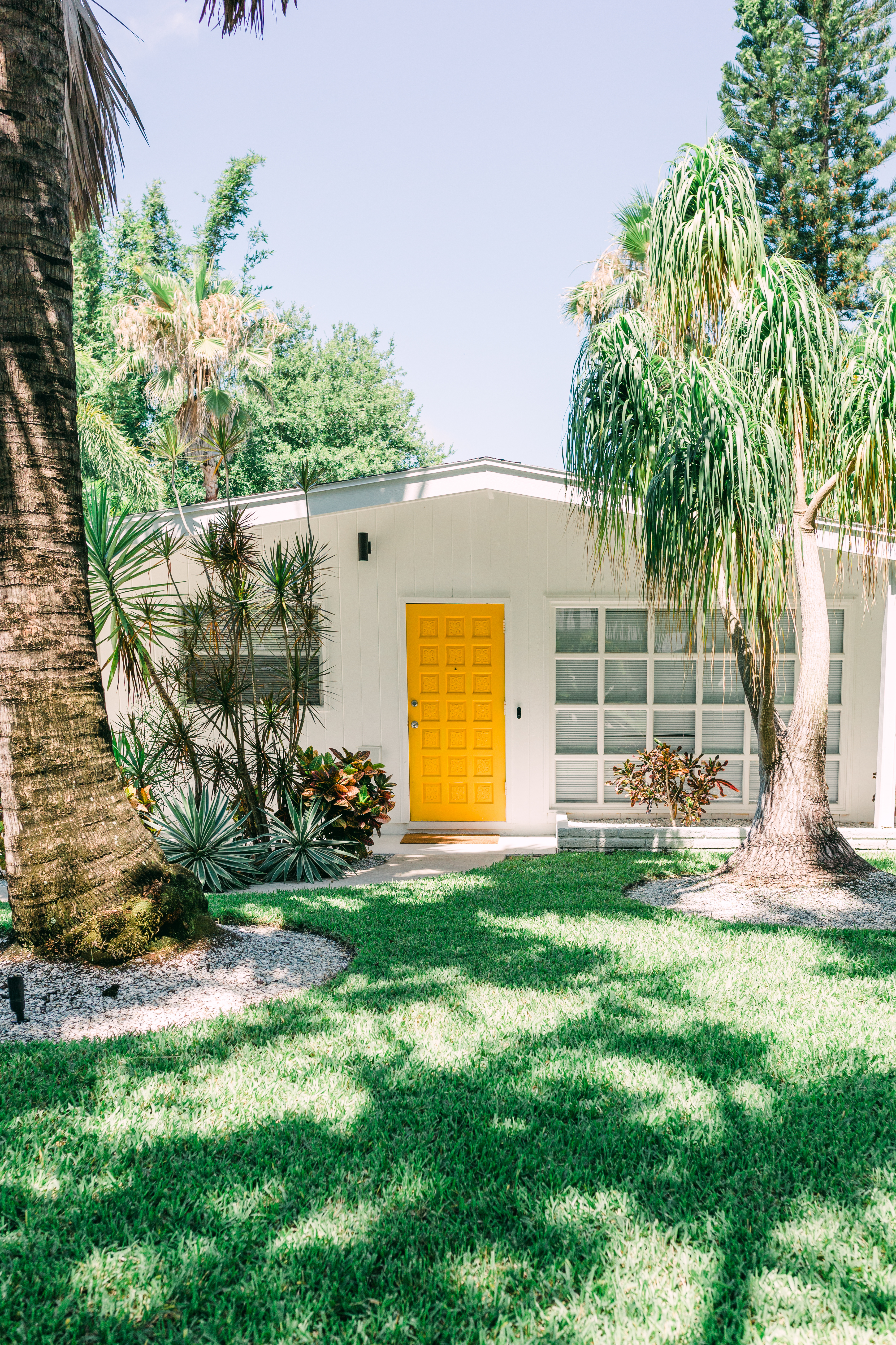 Mid-century modern home painted white with yellow front door and palm trees.