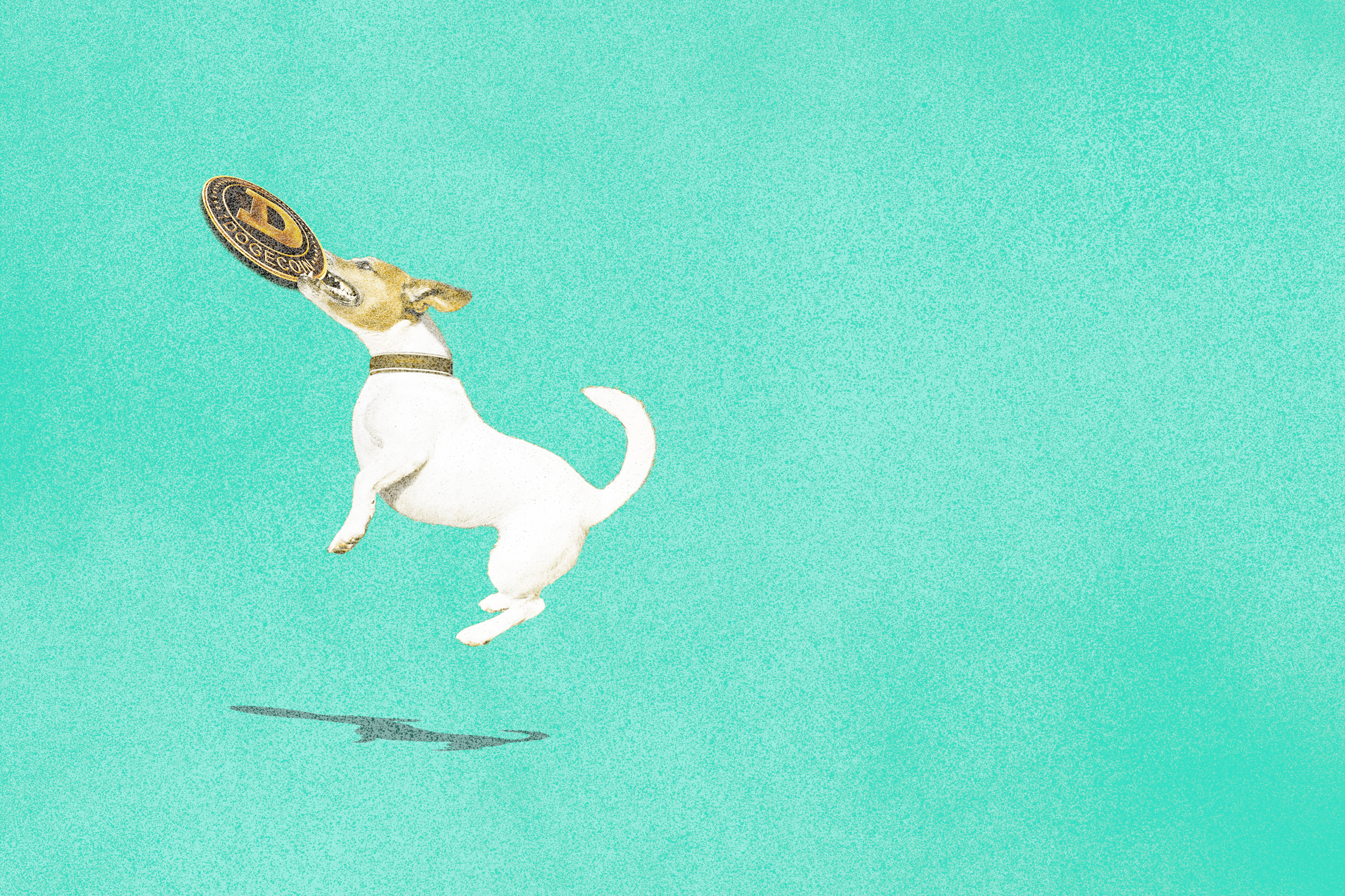 An illustration that shows a dog catching a coin.